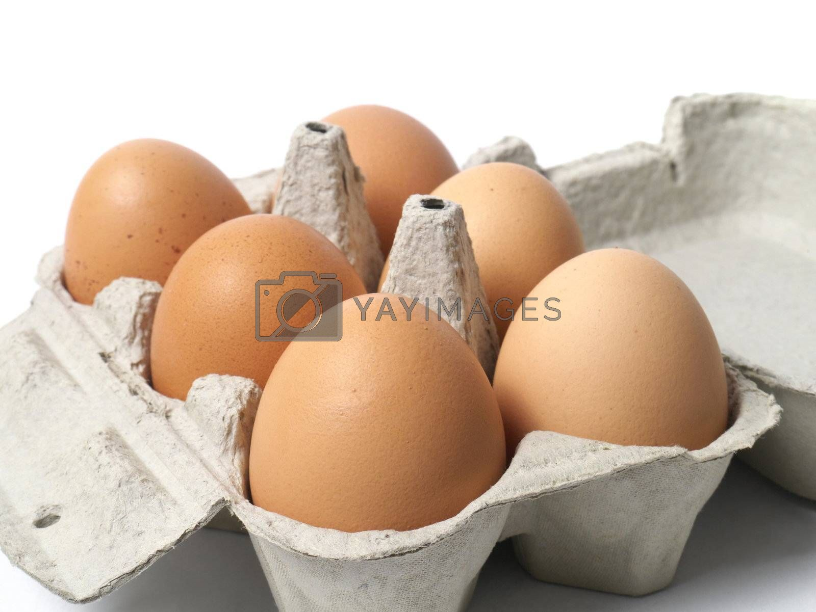 Six eggs in container on white background