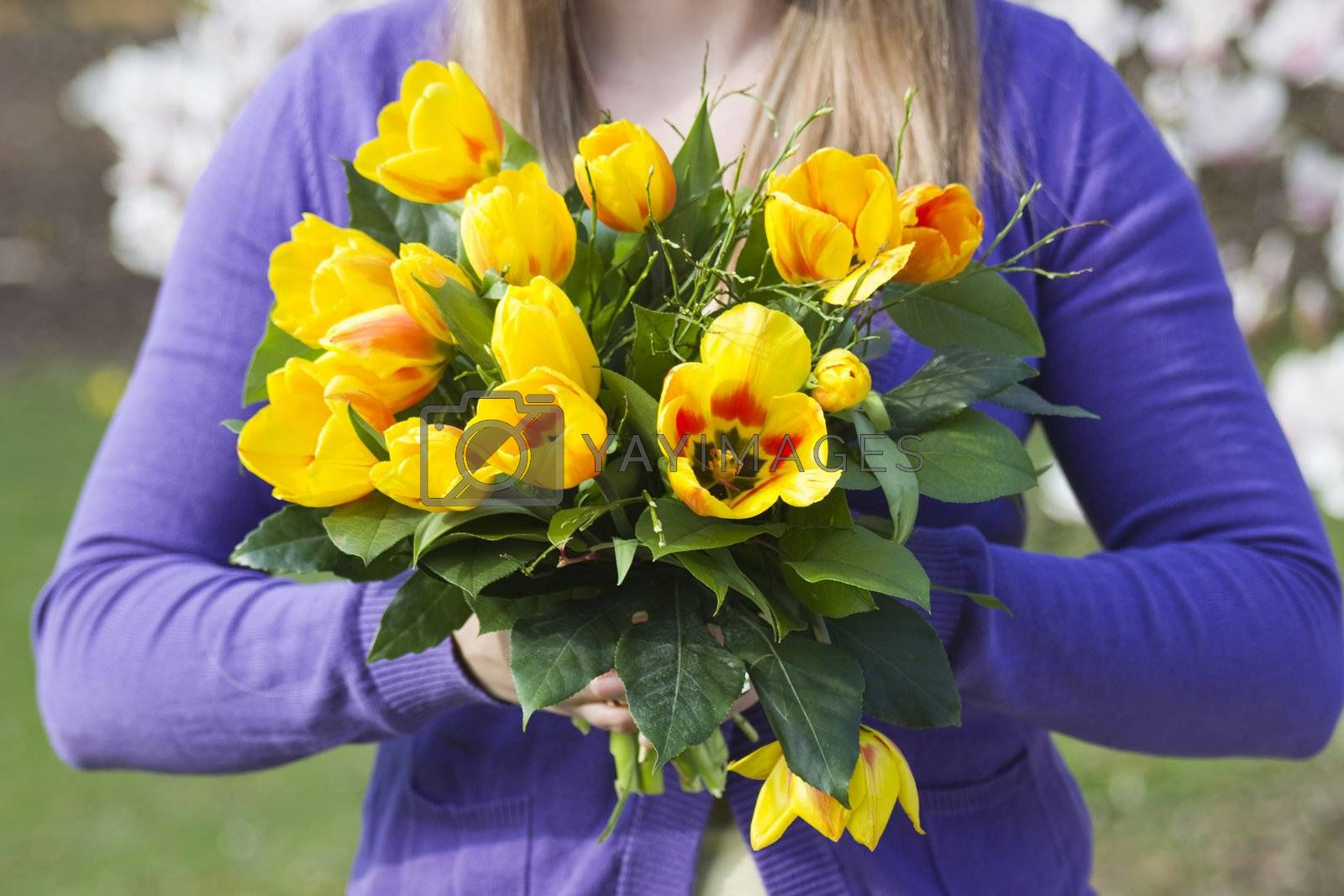 Bunch of tulips in woman's hands