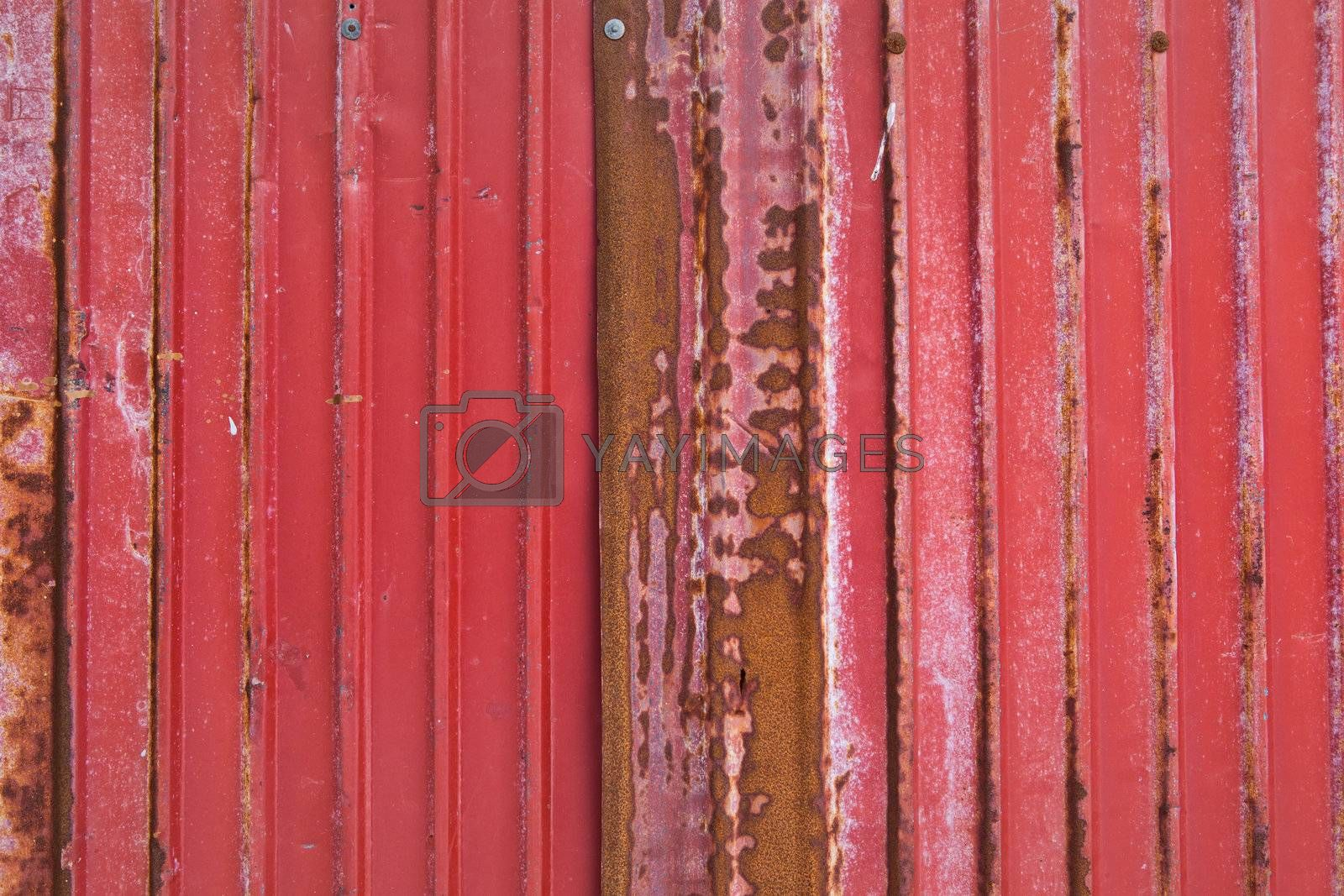 rusty corrugated iron metal by witthaya