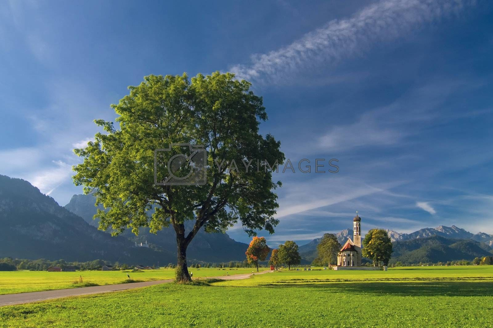 Royalty free image of Landscape with mountains and big tree by firewings