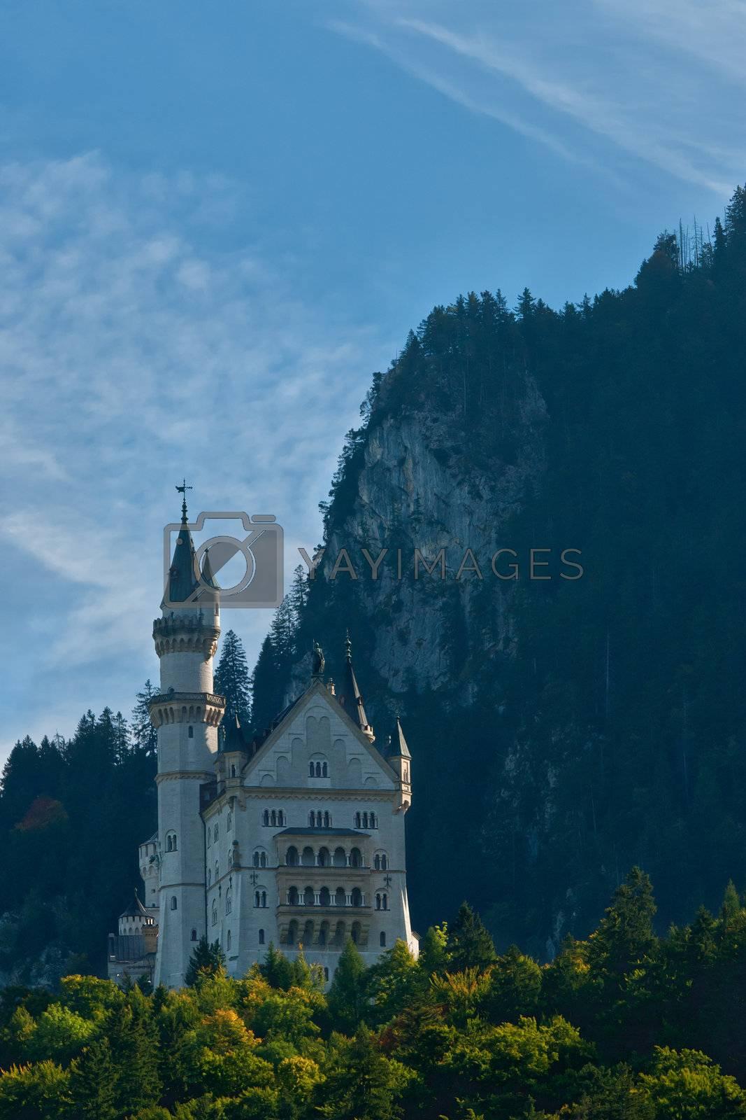 Royalty free image of Neuschwanstein Castle landscape by firewings