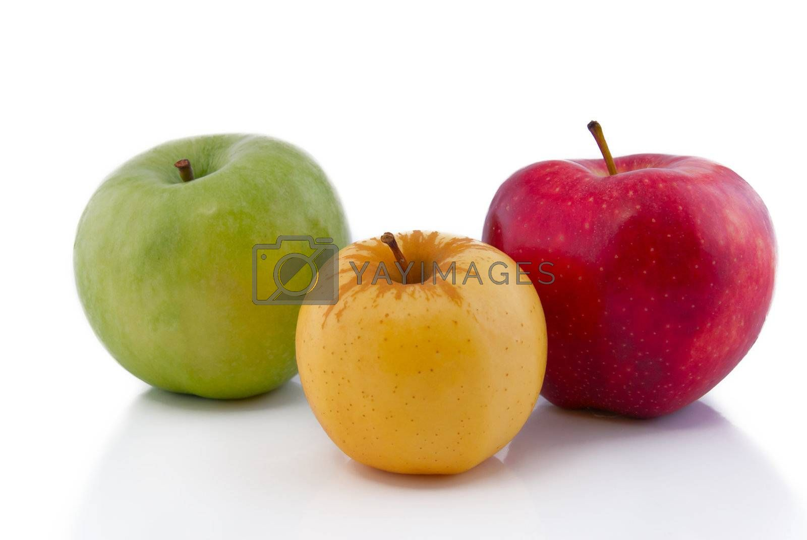 Green, yellow and red apples on white with reflection