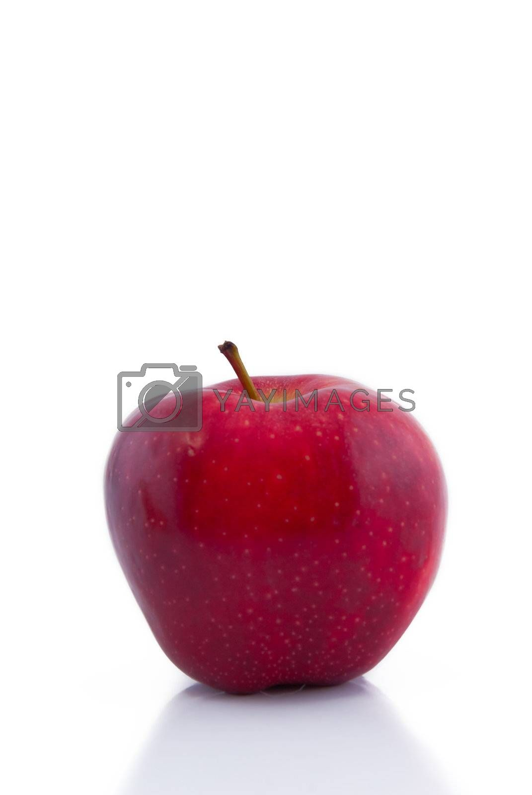 One red apple on white with reflection