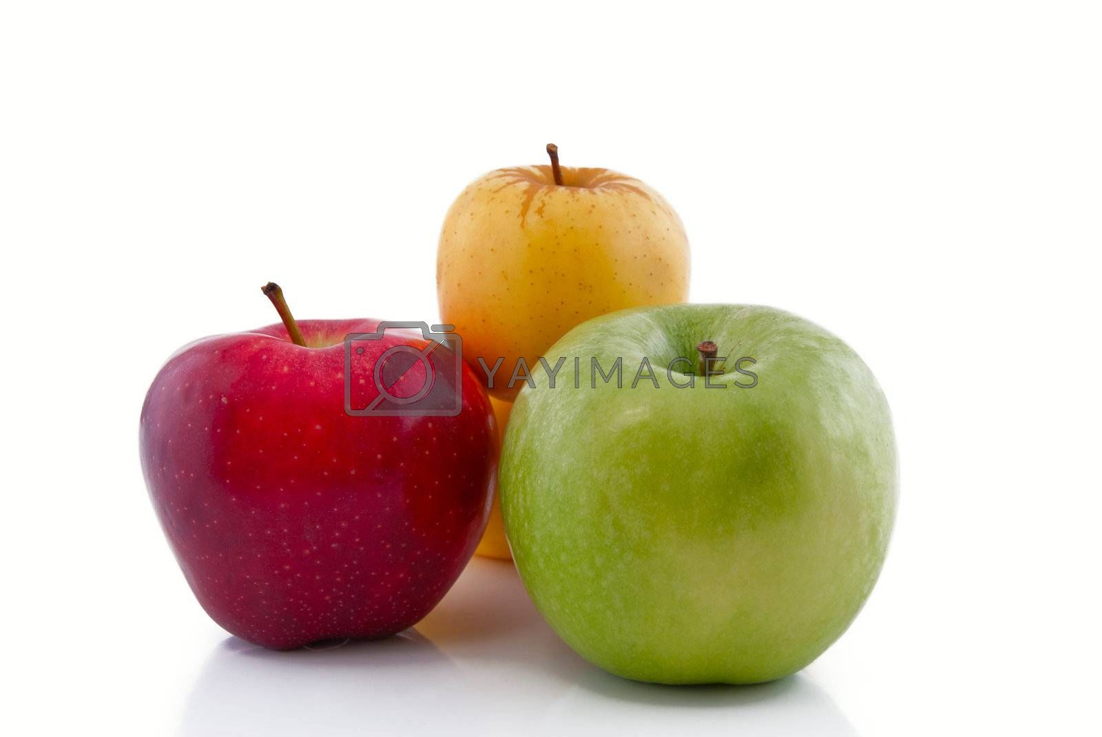 Red, green and yellow apples with reflection