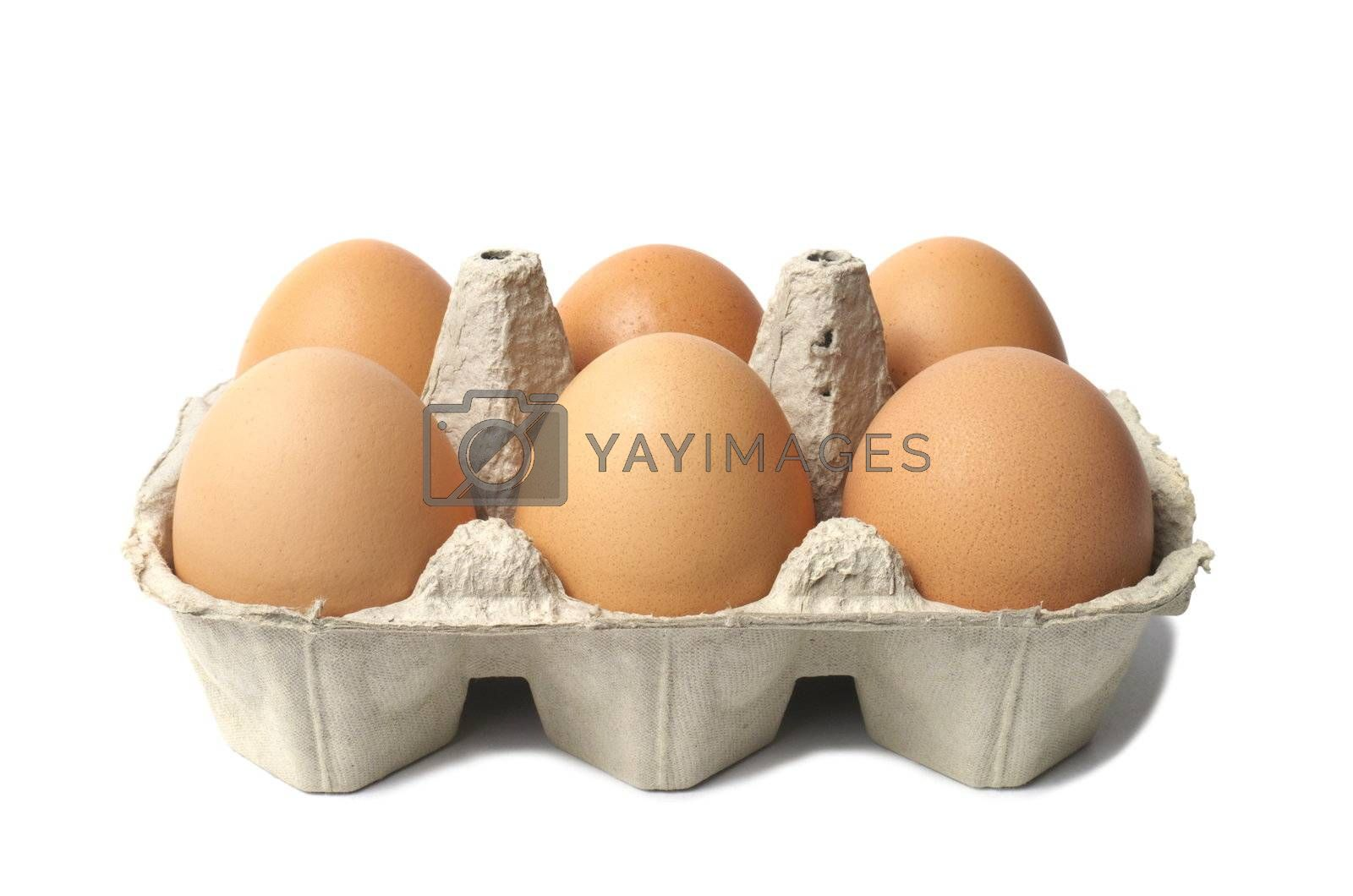 Six eggs in container isolated on white background