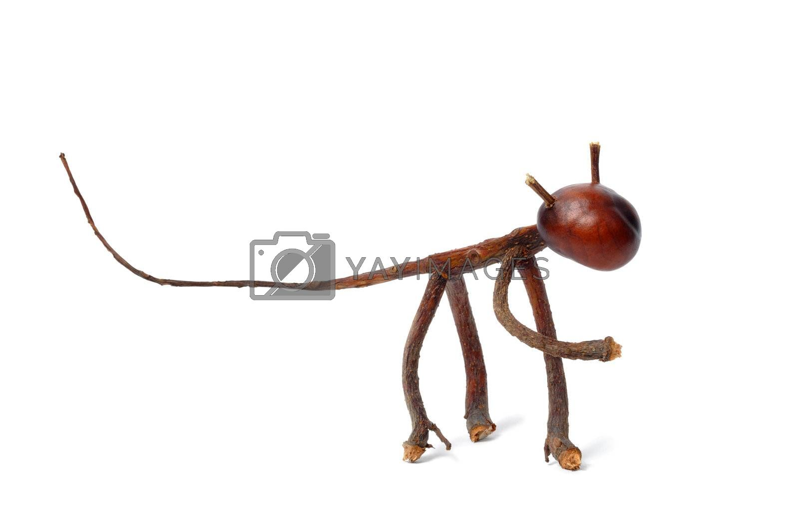 Toy made from chestnuts and matches on white background