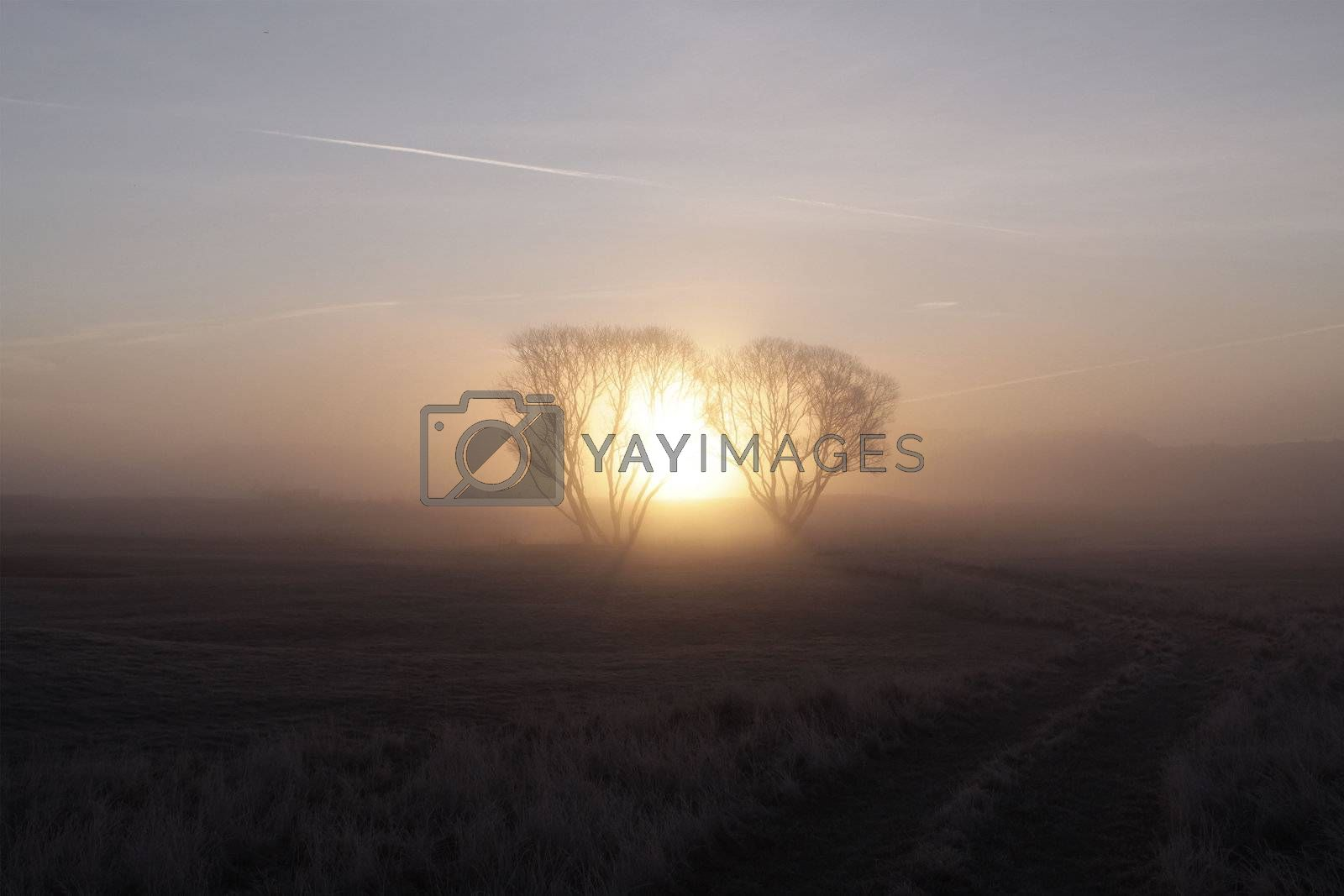Early morning in the quiet hamlet of Russia, you can see the sun rise over the boundless fields