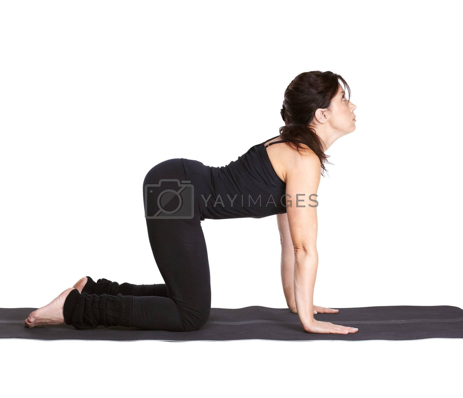 full-length portrait of beautiful woman working out yoga exercise dog pose mardzhariasana on fitness mat