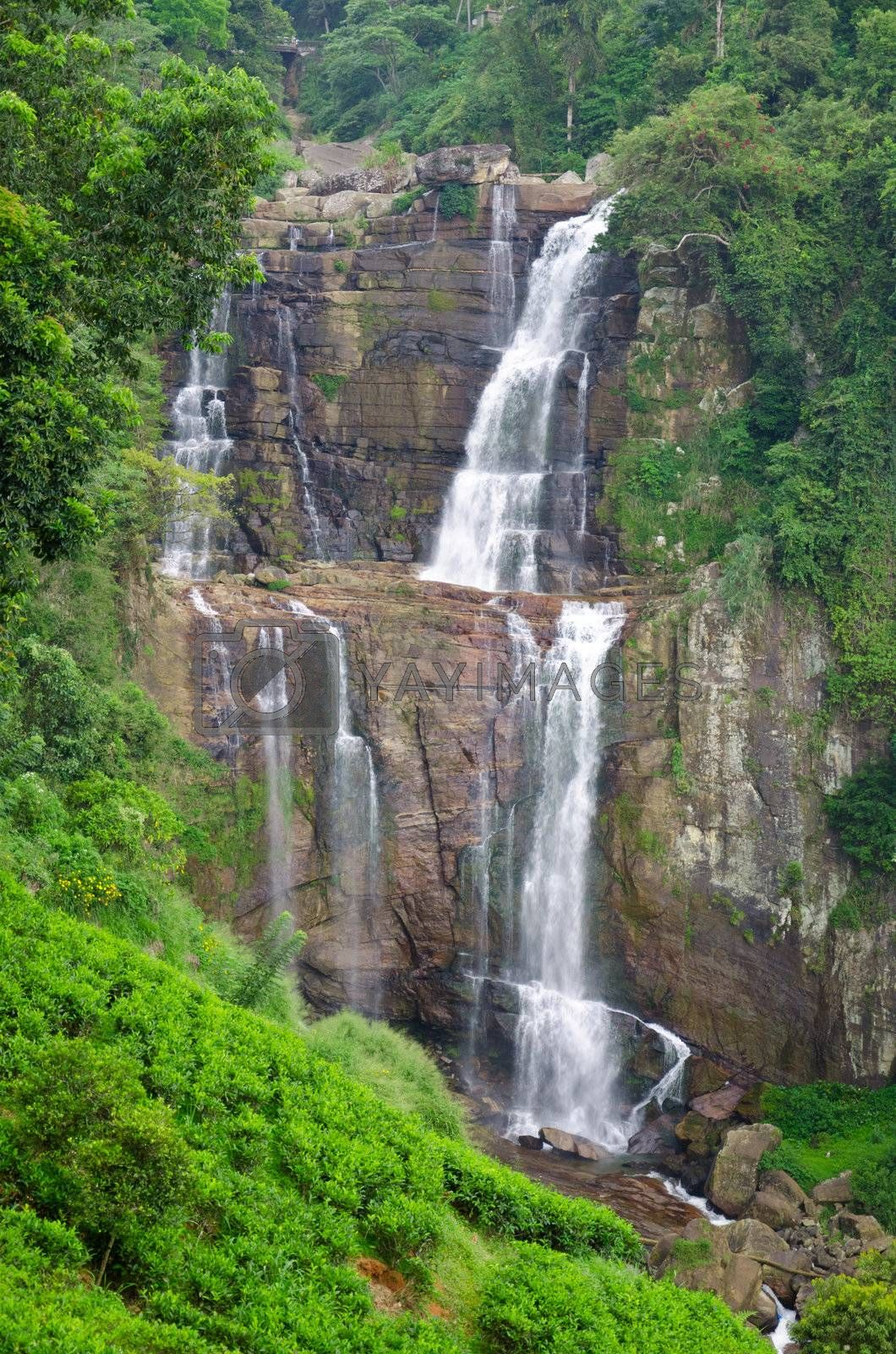 Ramboda magnificent waterfall in the mountains of Sri Lanka