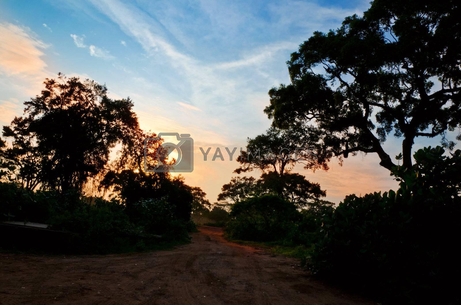 car on a dirt road equatorial countries