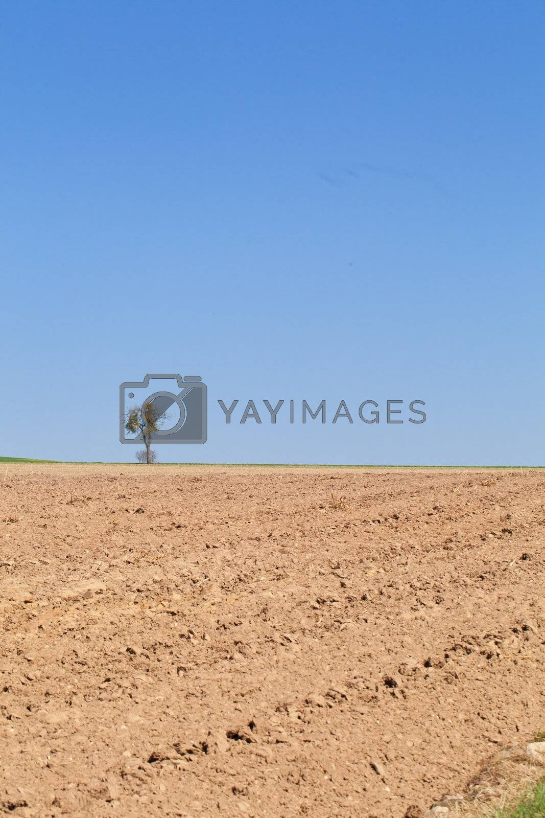 Drought field landscape in the countryside