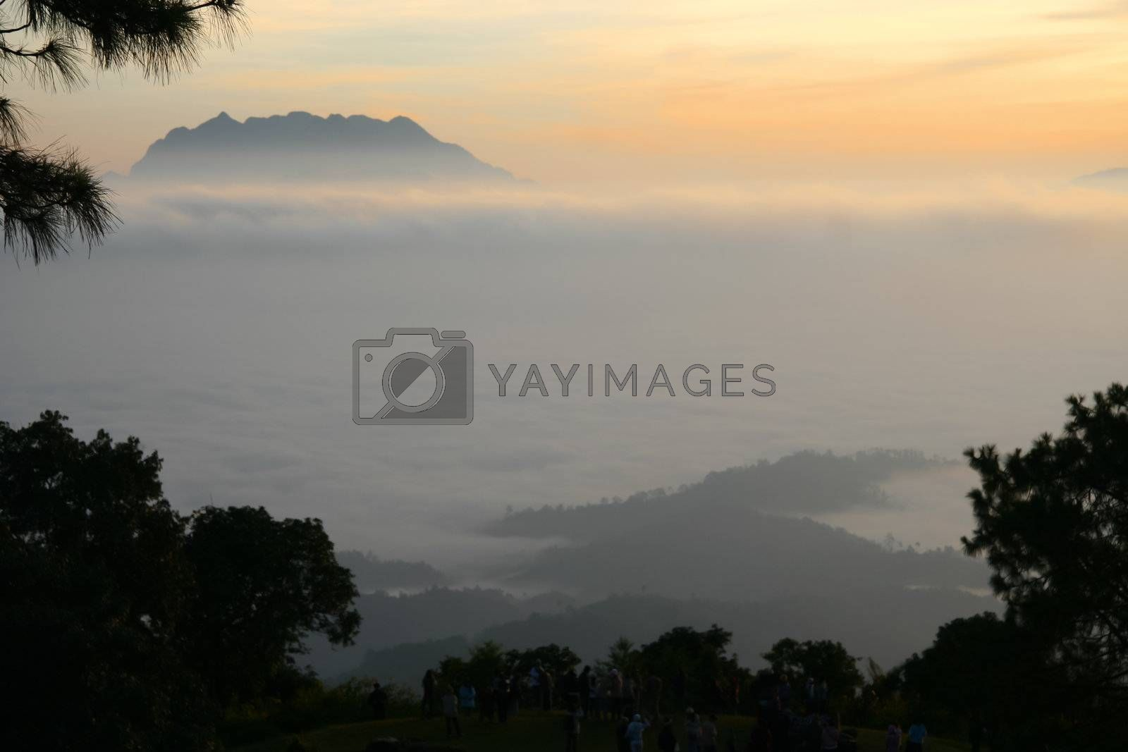 Mountain and fog in the morning in Thailand