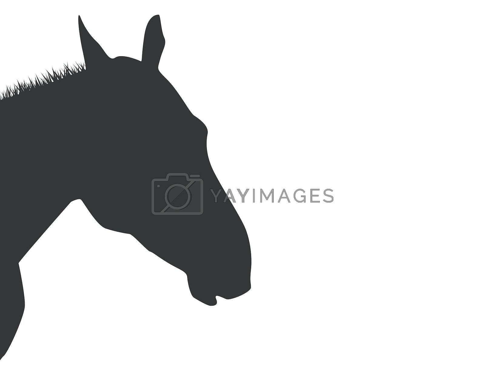 A silhouette of a horse head isolated on white