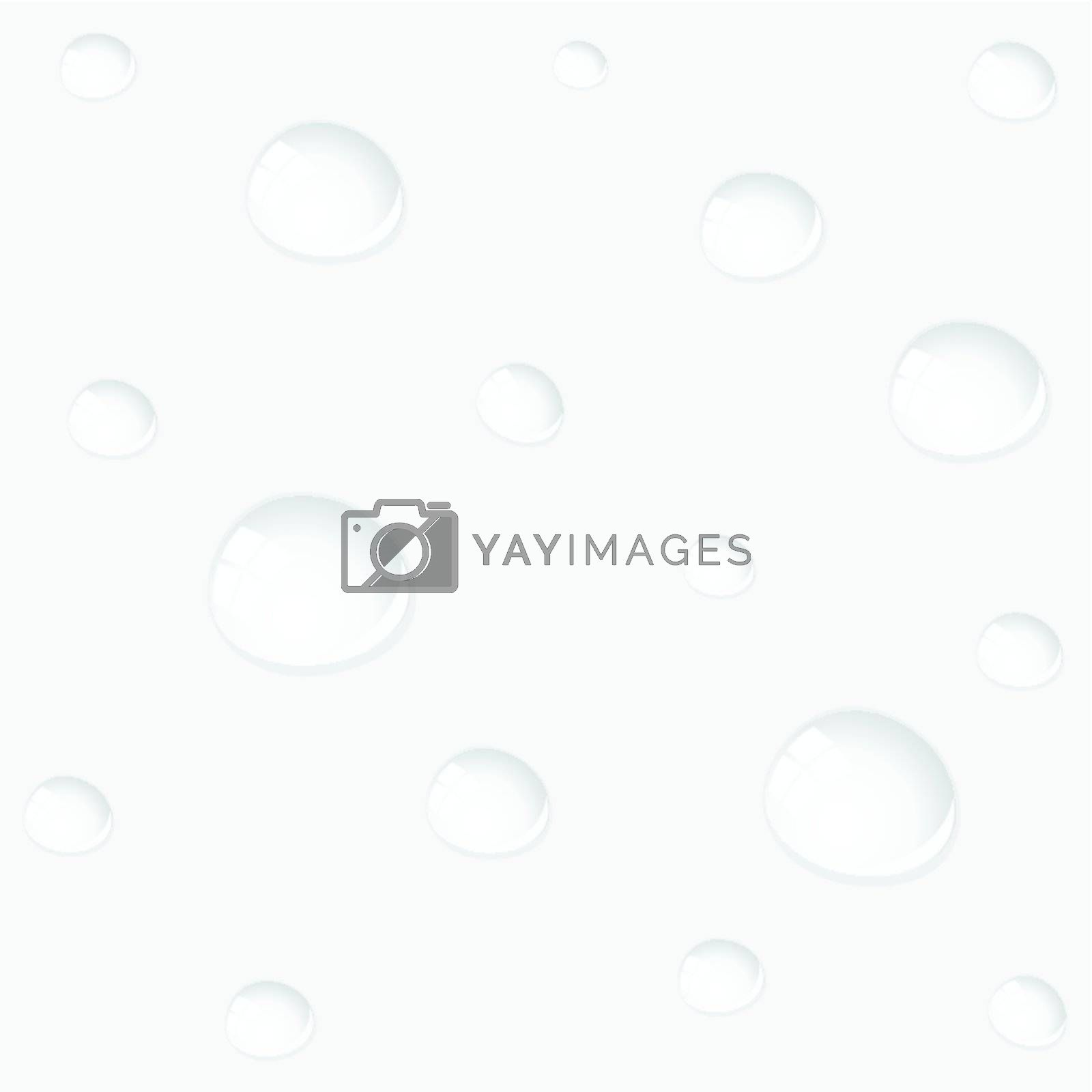 Water drops on grey glass. A vector illustration