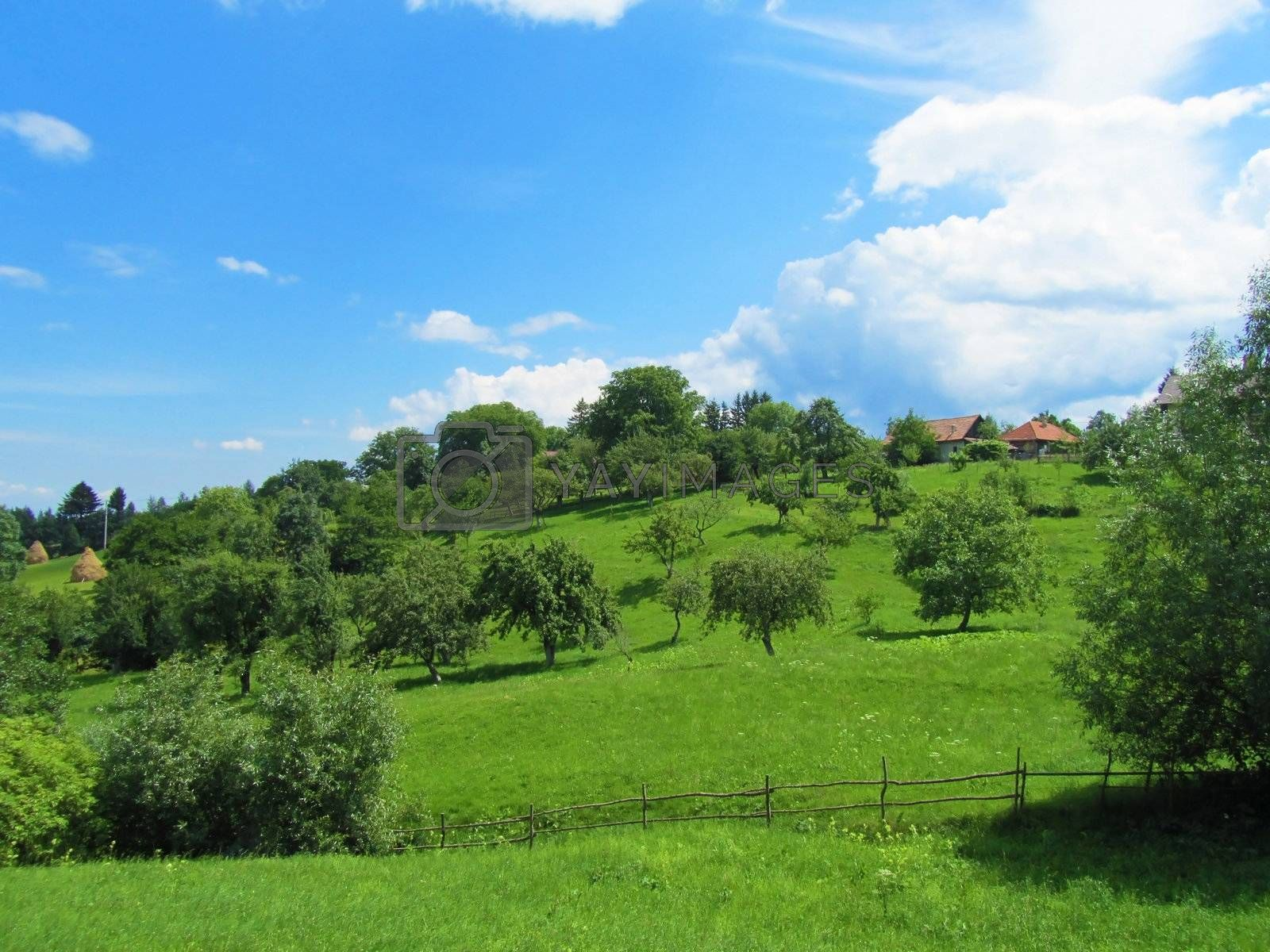 View of green hills with houses and trees