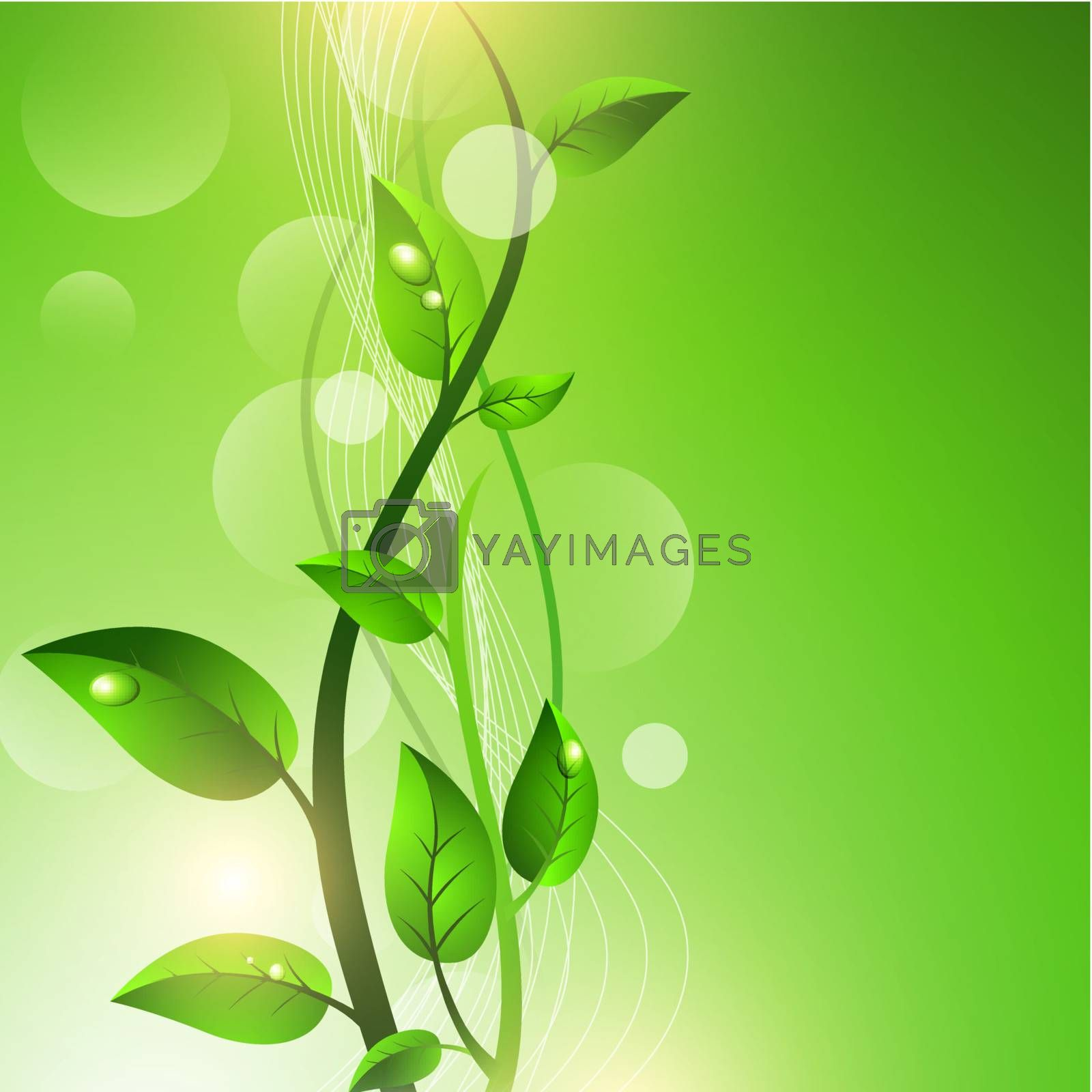 Green sprout with drops at leaves over fresh green background, copyspace for your text