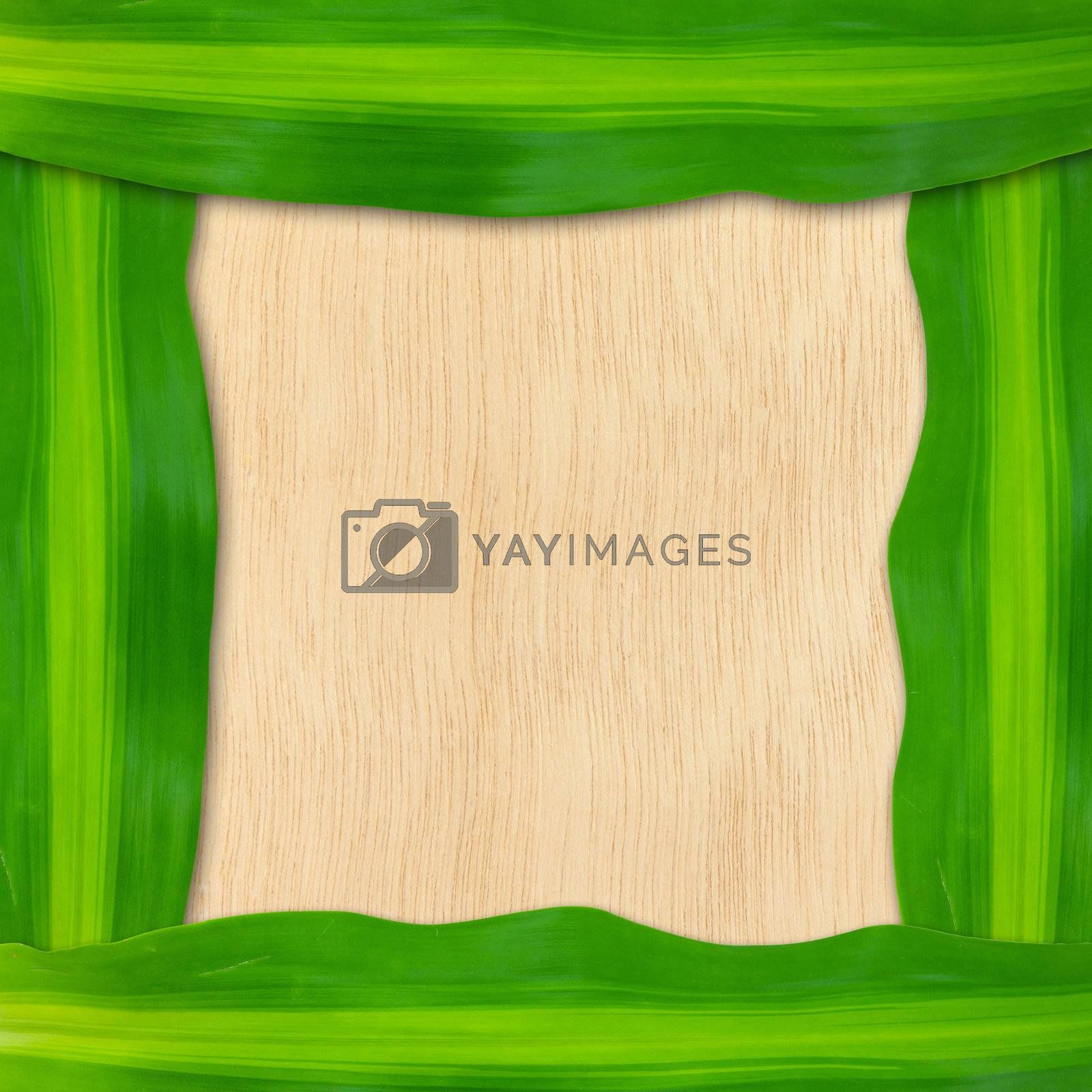 green leaves frame by witthaya