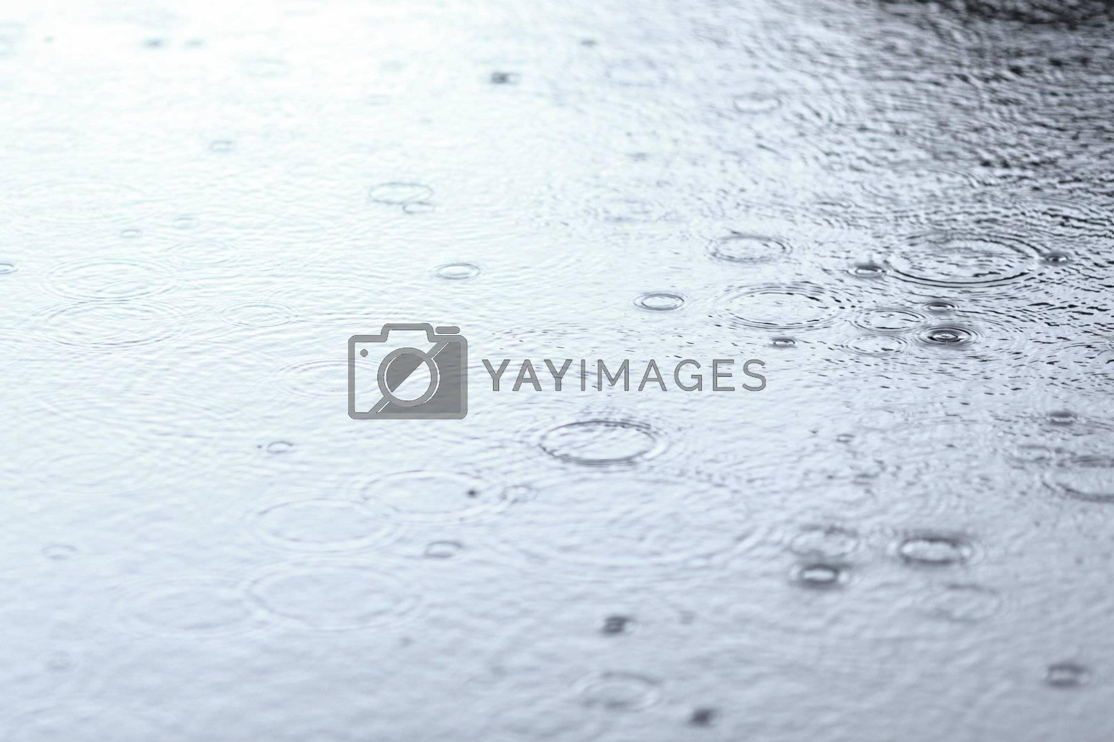 water drops on lake close up
