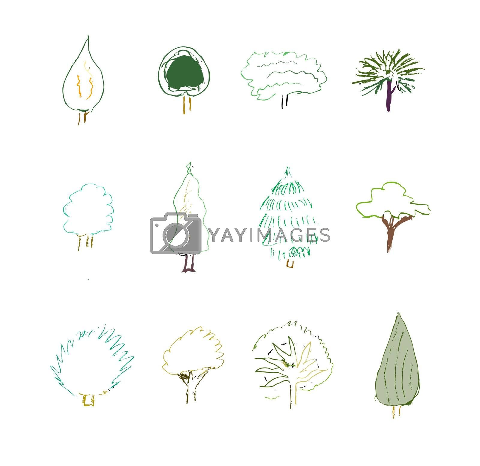 A collection of natural elements with grunge. Vector.