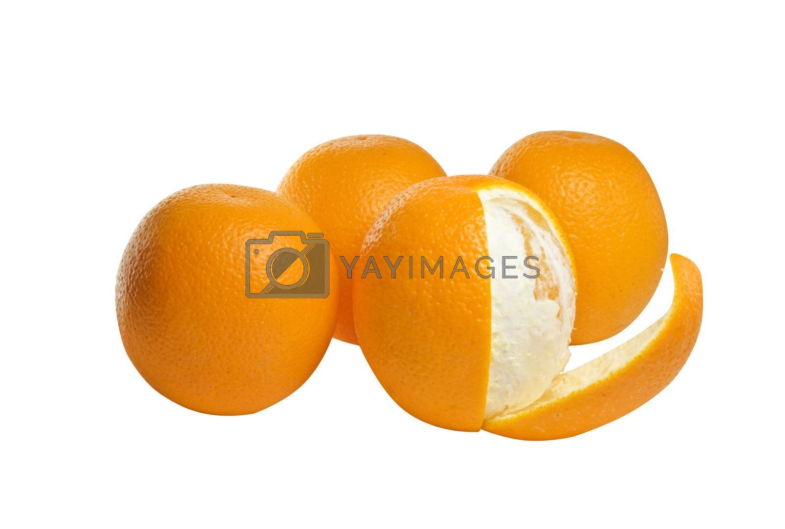 Four oranges set against a white background.