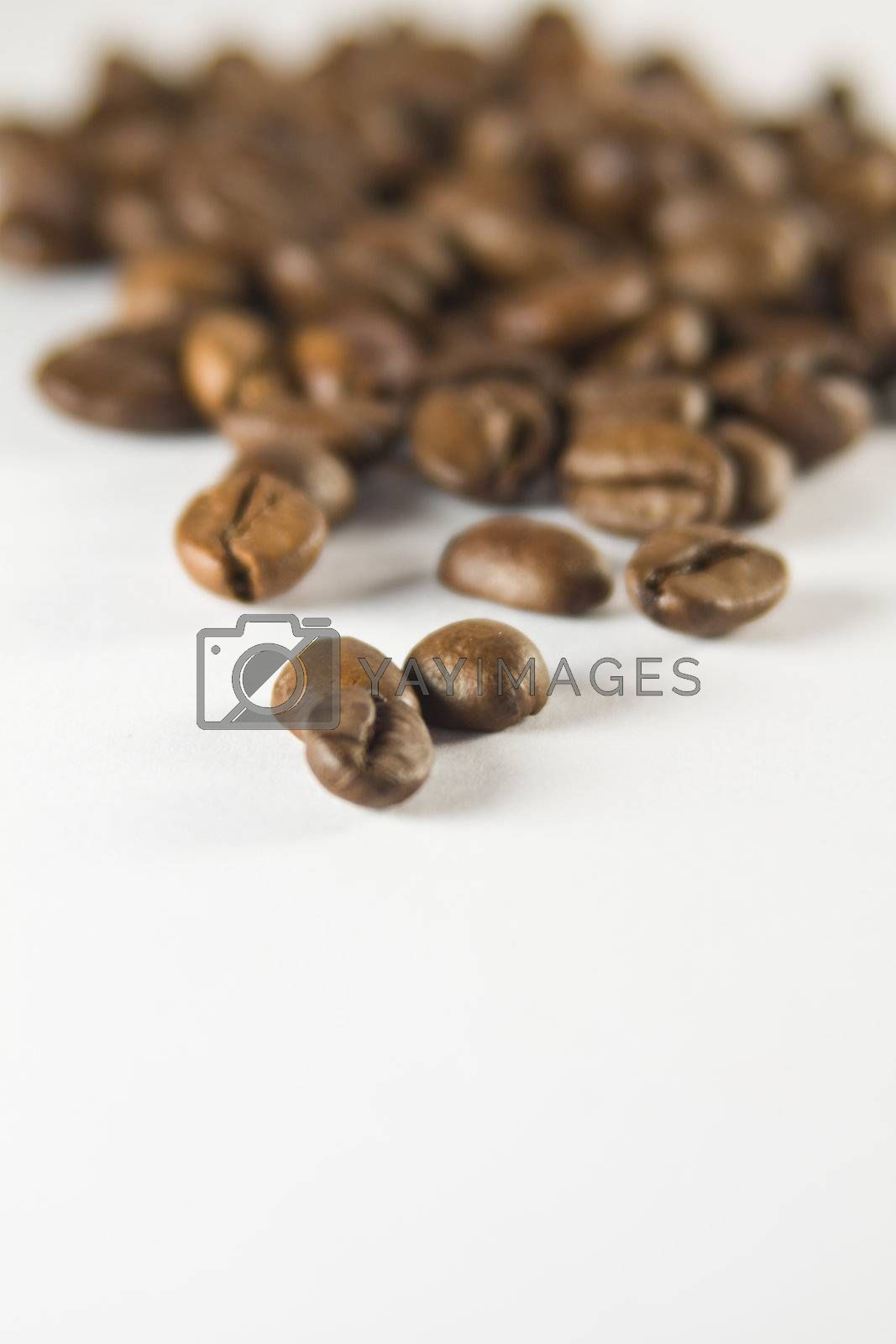 Coffee Beans close-up, small depth of sharpness.