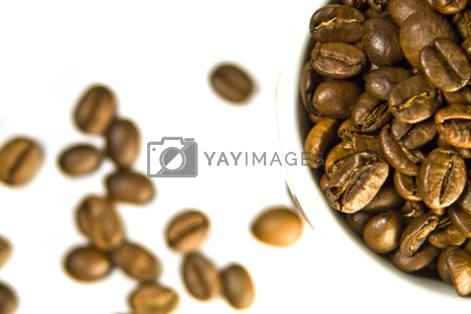 The cup of coffee and beans, small depth of sharpness.