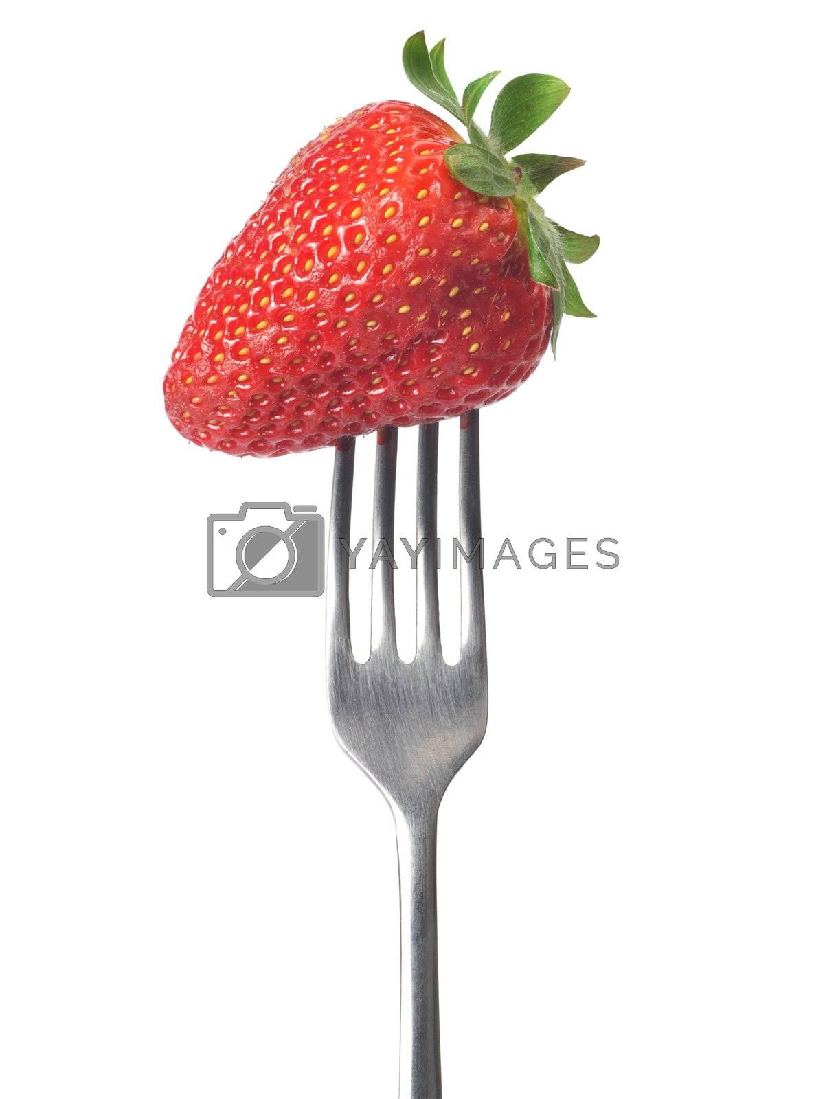 Fresh big strawberry on a fork against white background