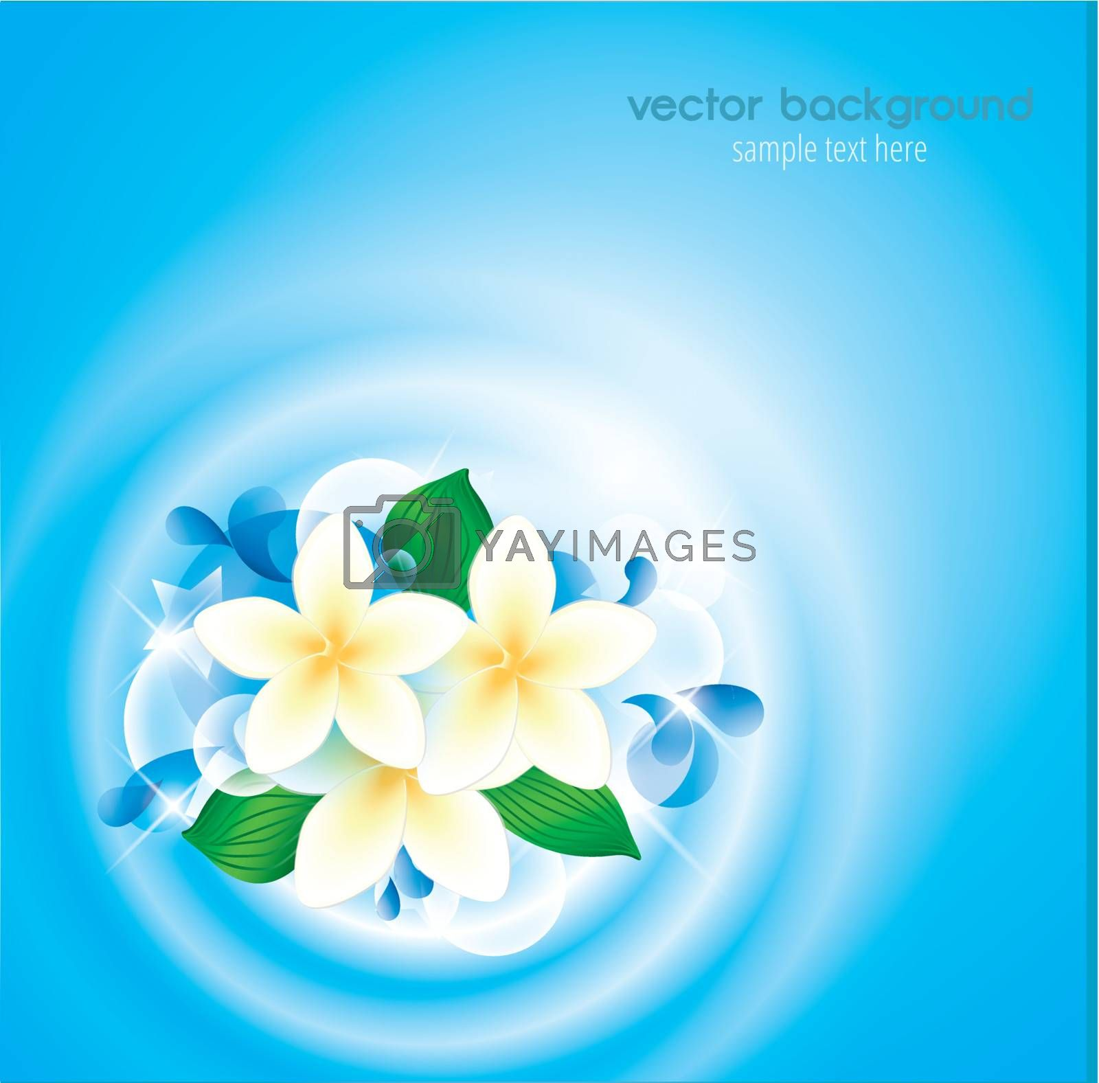 flowers in clean water with place for text