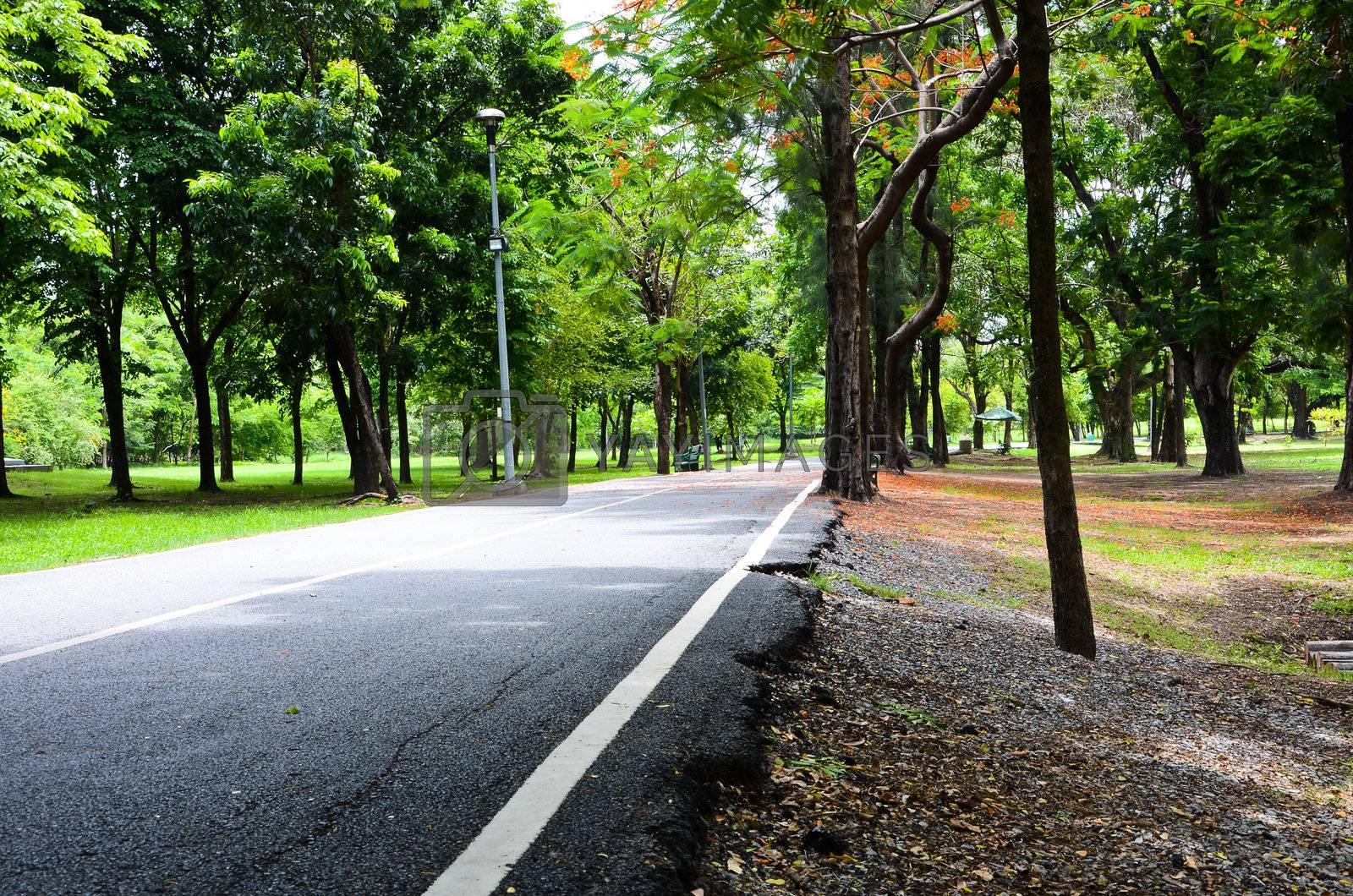Green city park at Bangkok of Thailand.