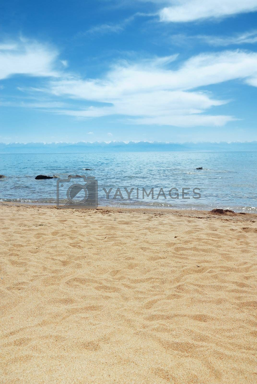 Landscape of the tropical beach in summer