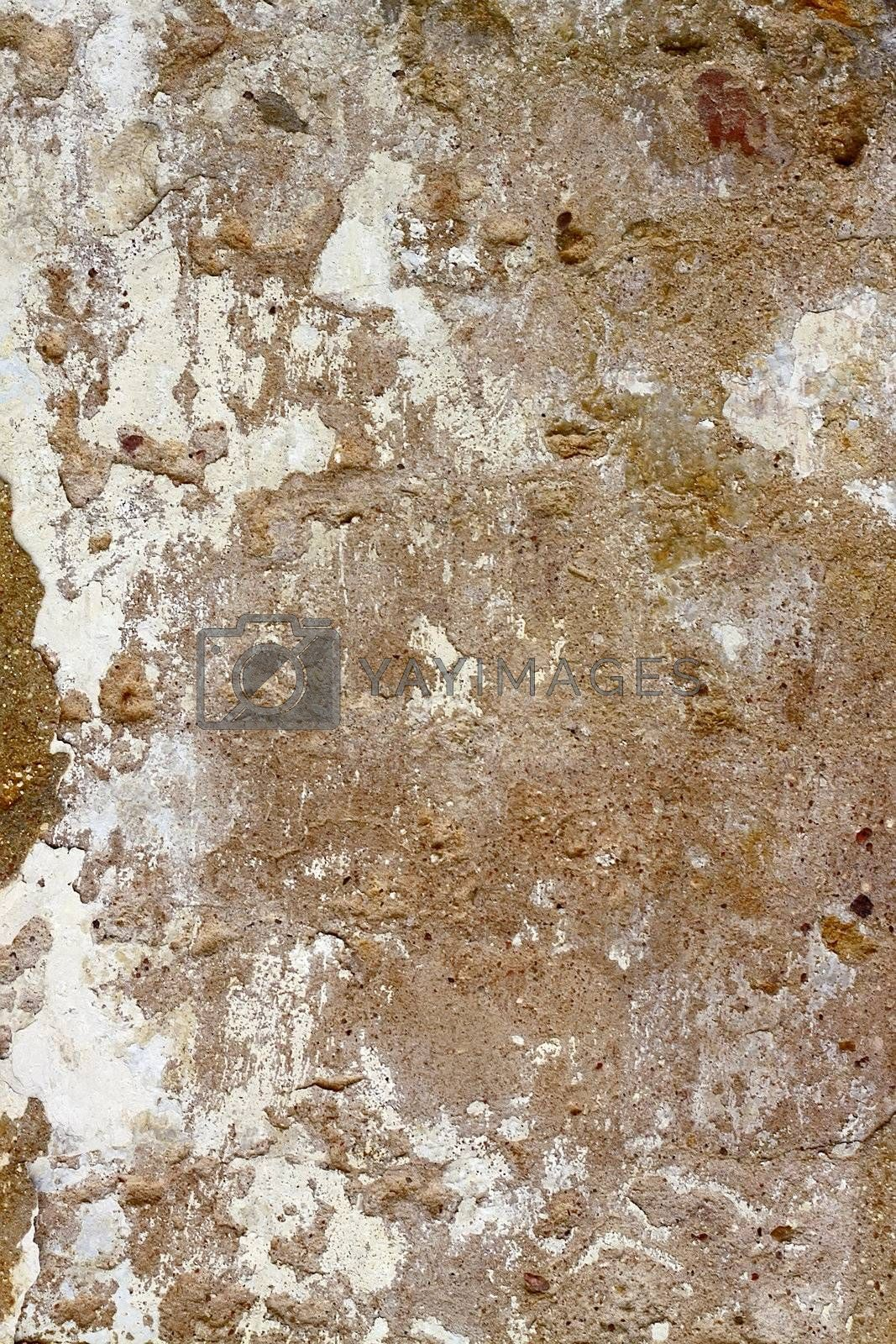 Texture of an old wall