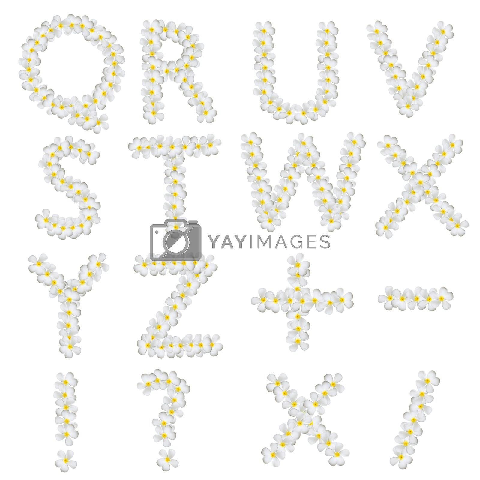 Plumeria alphabet isolated on white background