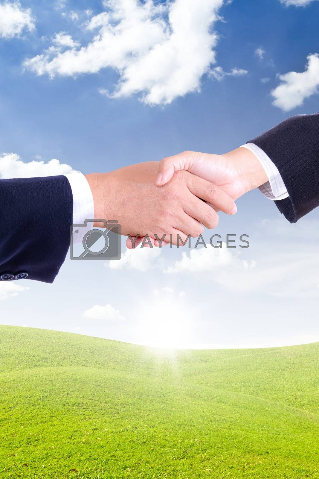 business hand shaking for new day