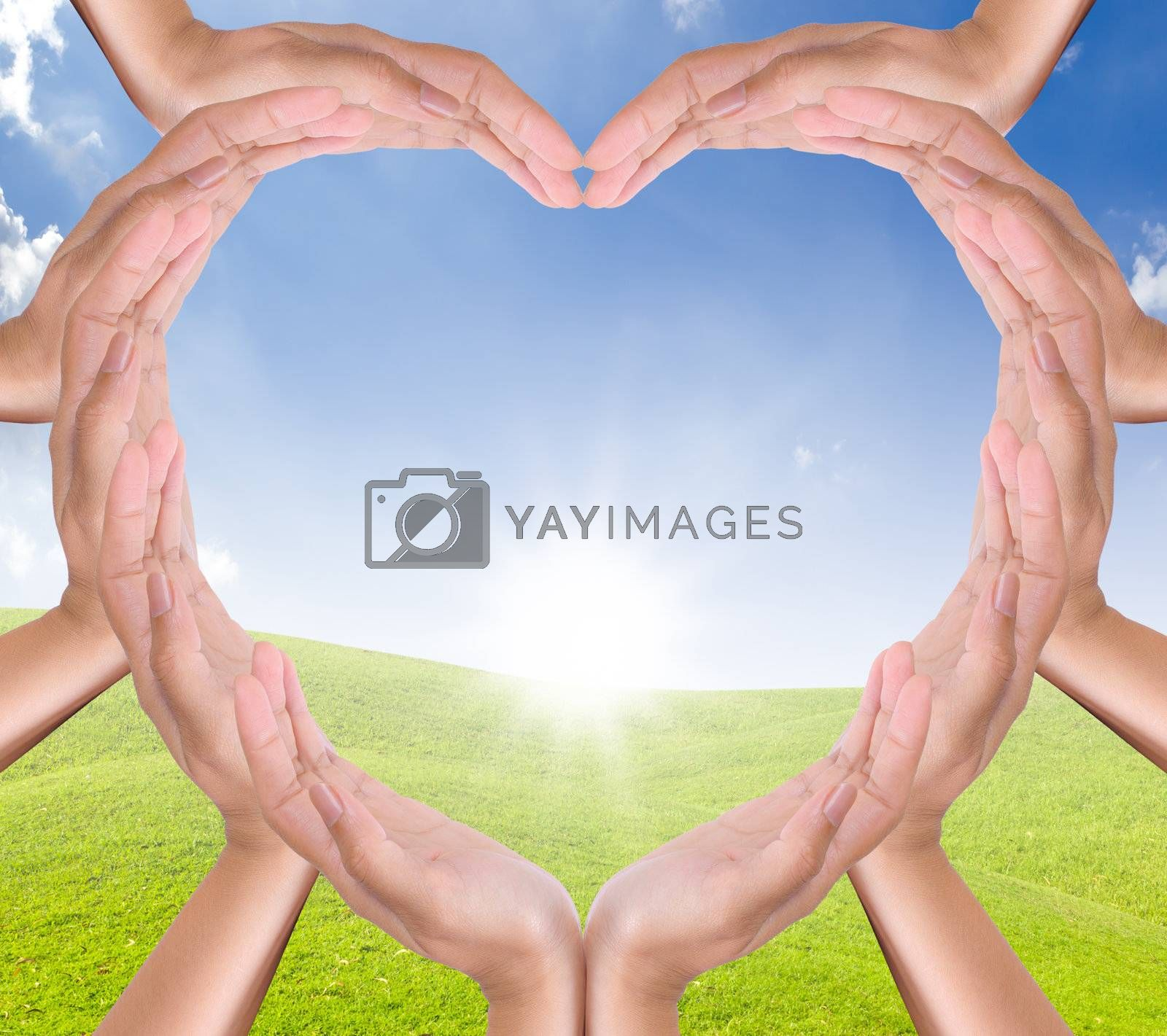 hands heart on new day