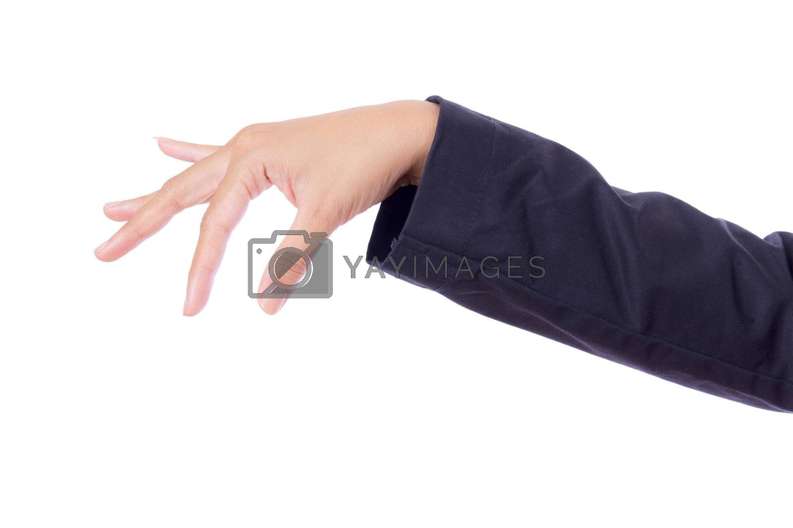 hand of business woman isolated on white background