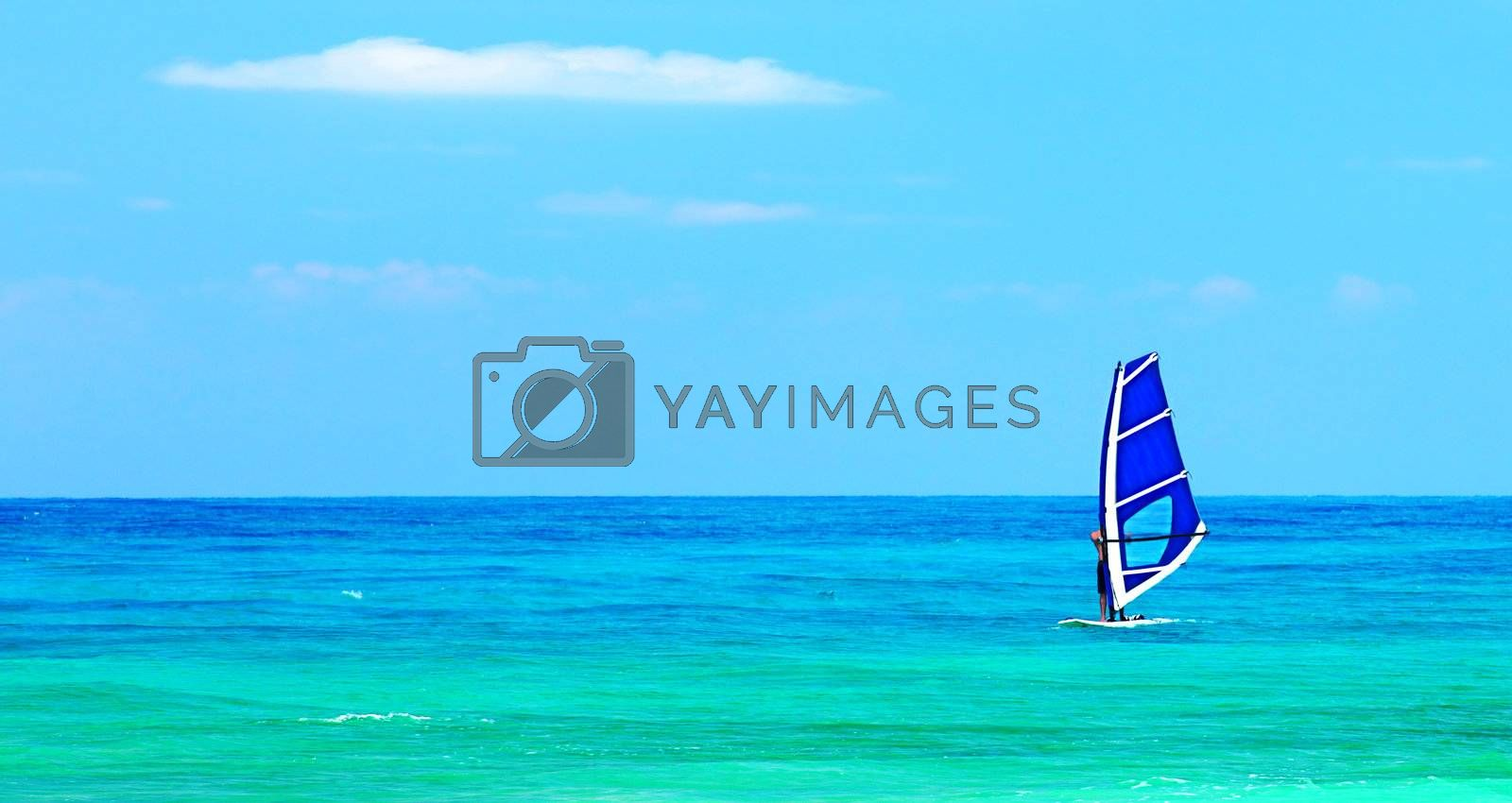 Panoramic beach landscape with windsurfer playing, deep blue sea at summertime, sport active people having fun