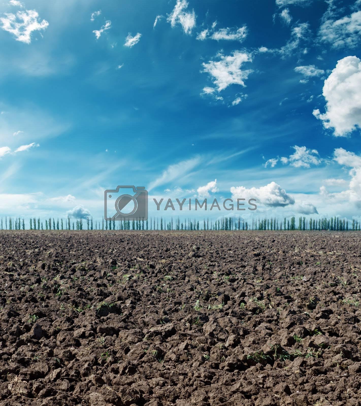 plowed field under dramatic sky
