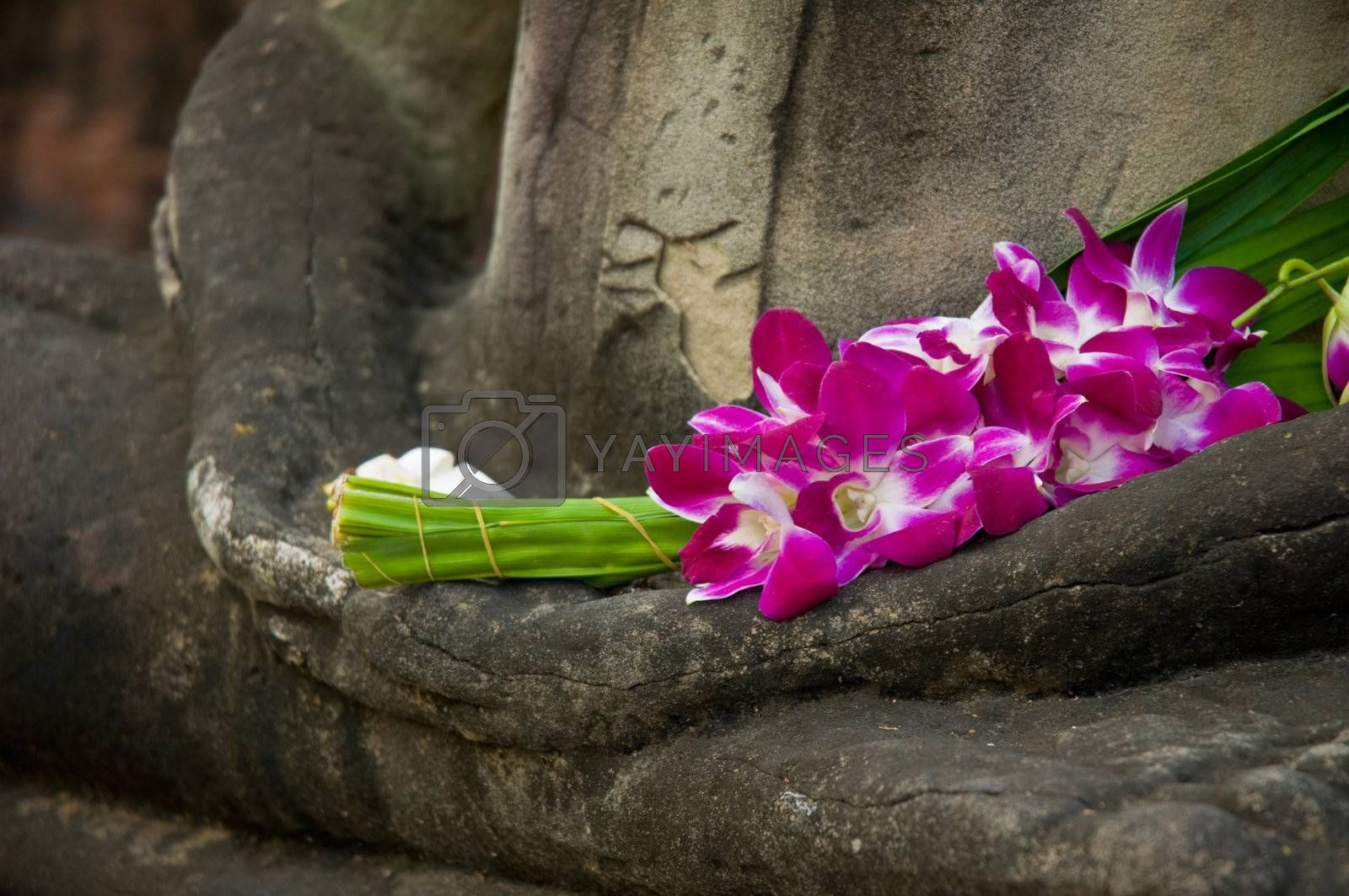 Sitting Buddha in meditation position, with fresh Orchid flowers in his hand. Ayutthaya city is the capital of Ayutthaya province in Thailand. Its historical park is a UNESCO world heritage.
