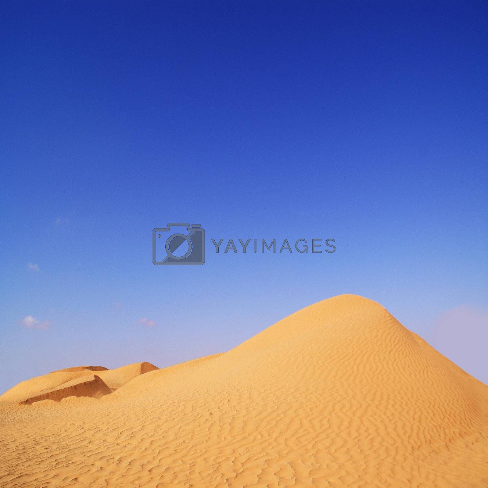 beautiful day in the dunes of Africa