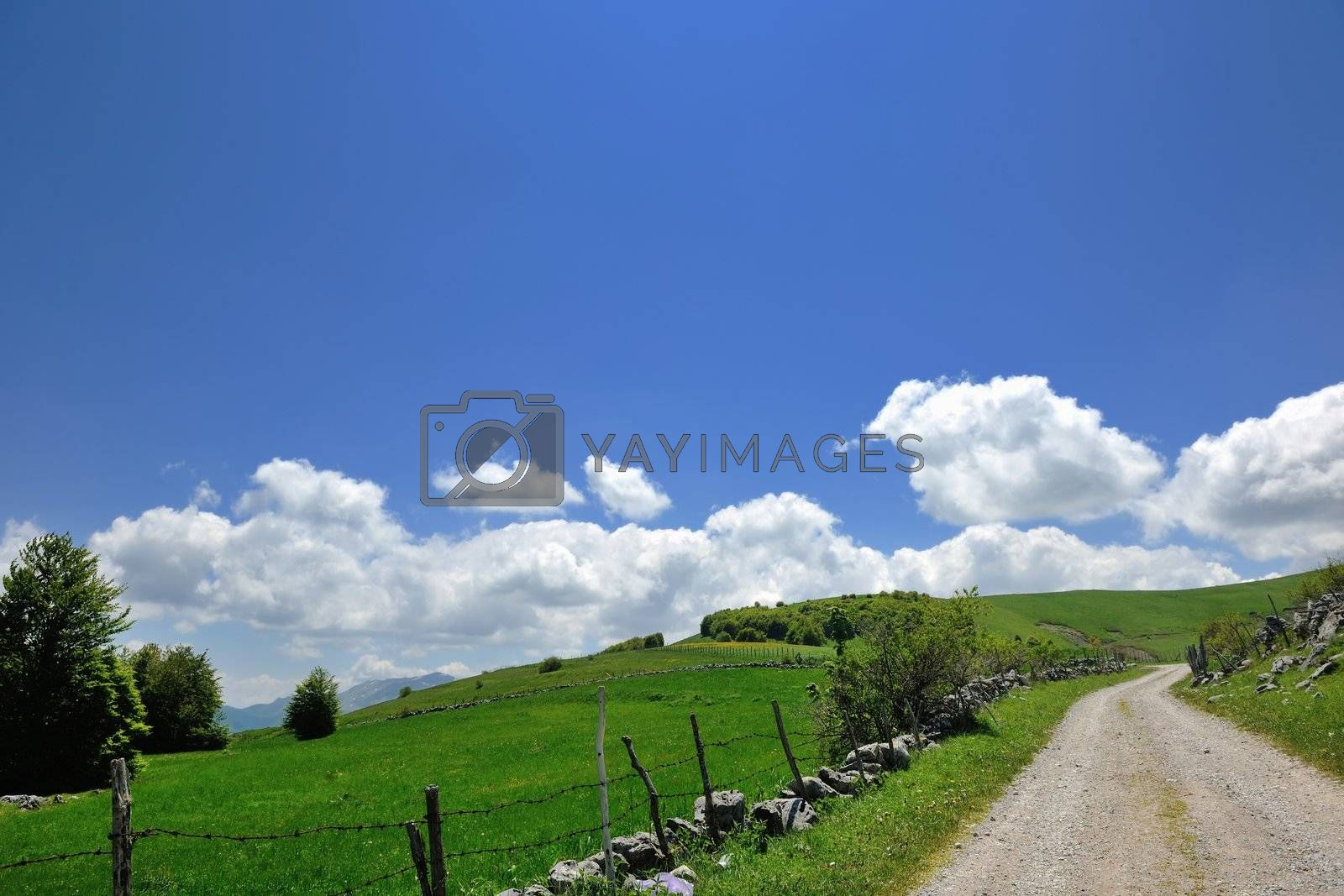 countryside mountain landscape and nature in spring season