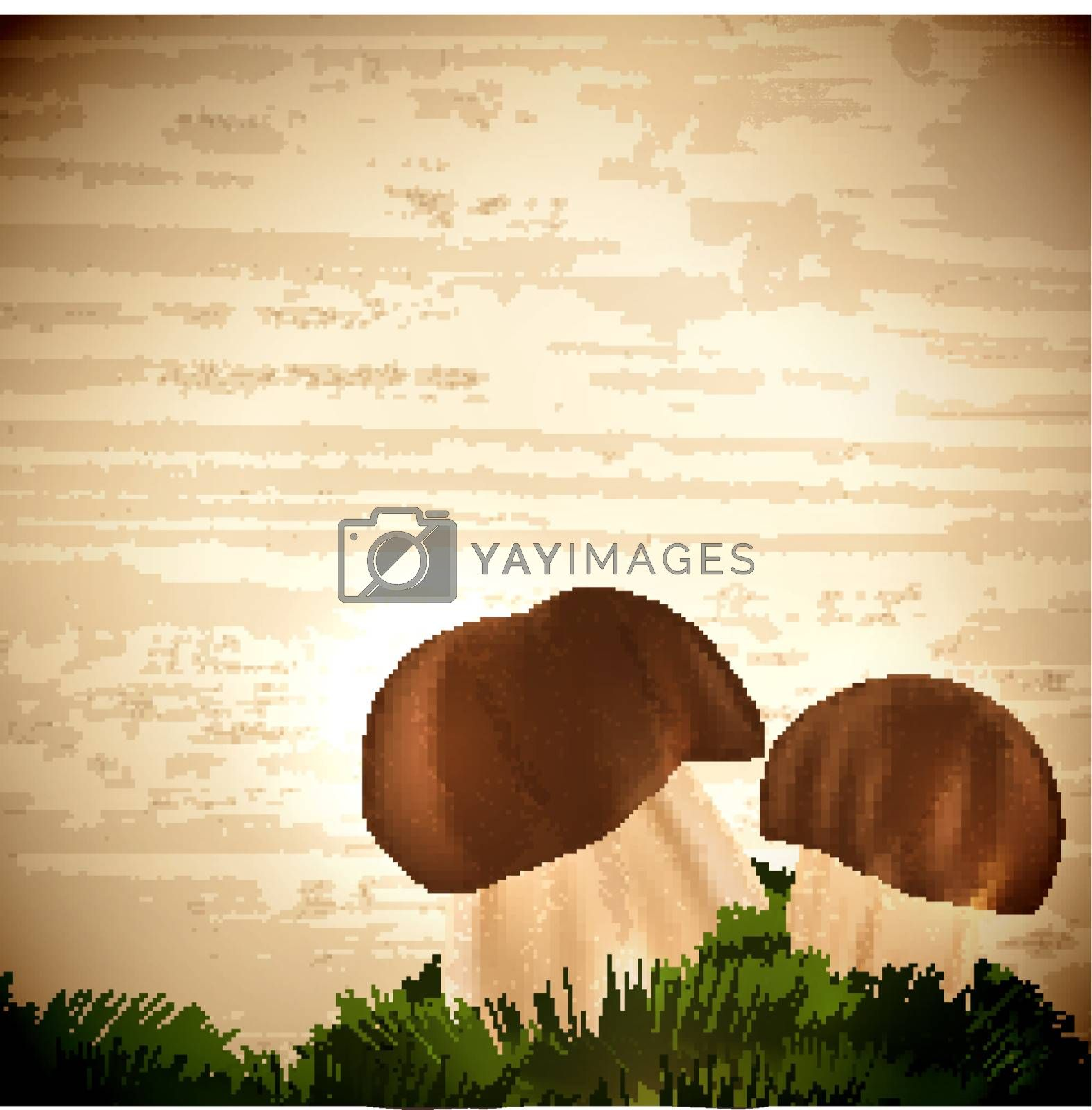 Boletus edulis mushrooms with grass over wooden background