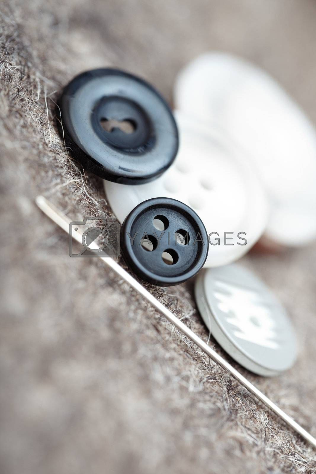 Buttons and sewing needle. Extremely close-up photo with shallow depth of field
