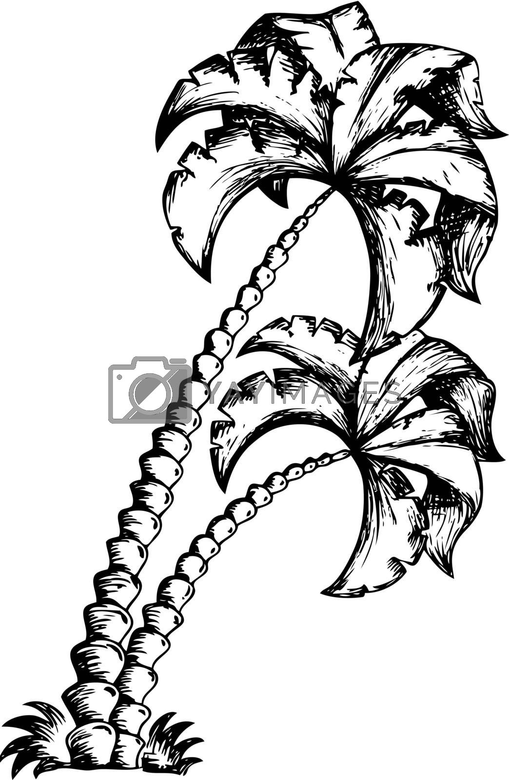 Palm tree theme drawing 1 by clairev