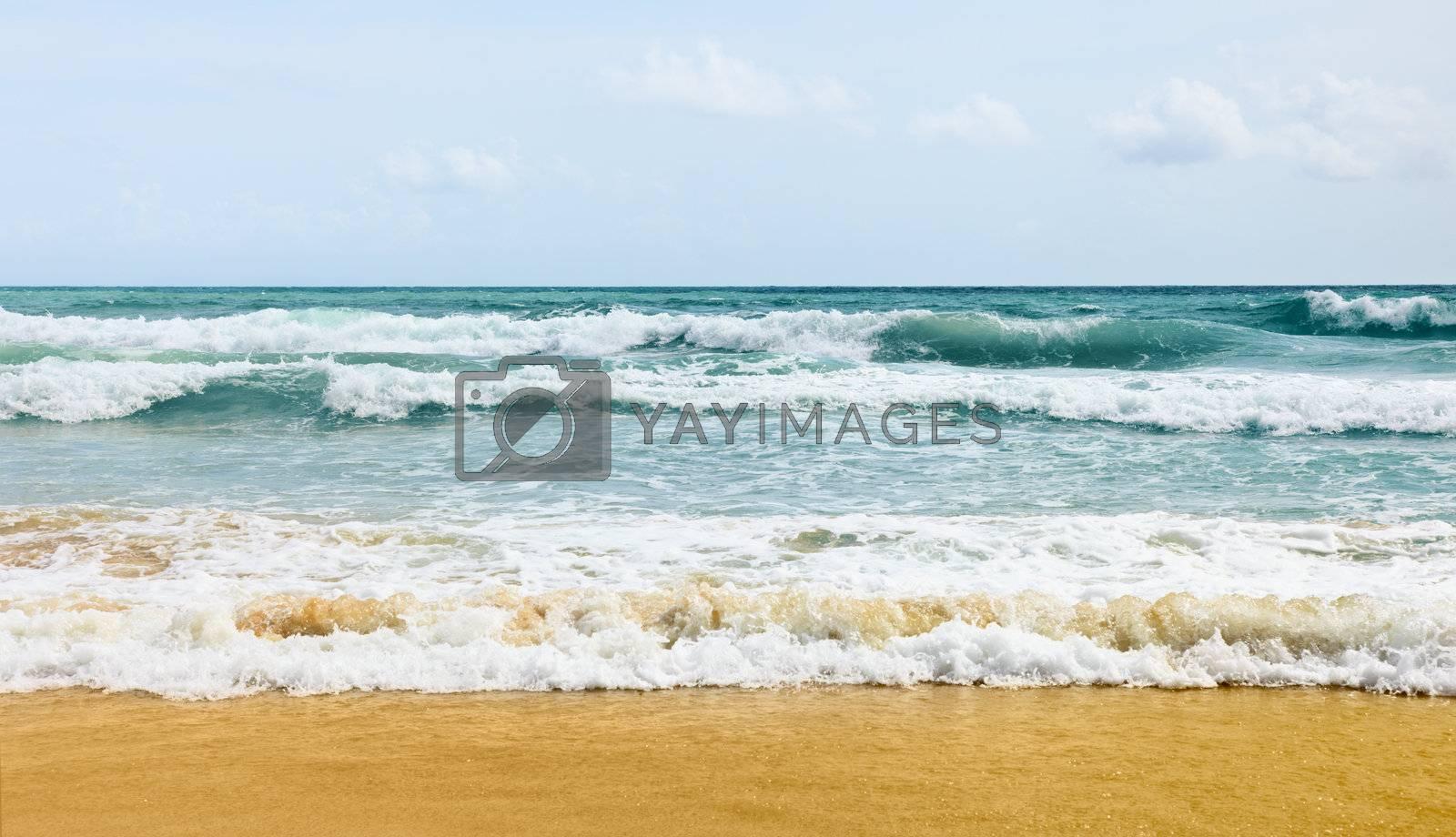 Azure tropical ocean waves on the beach