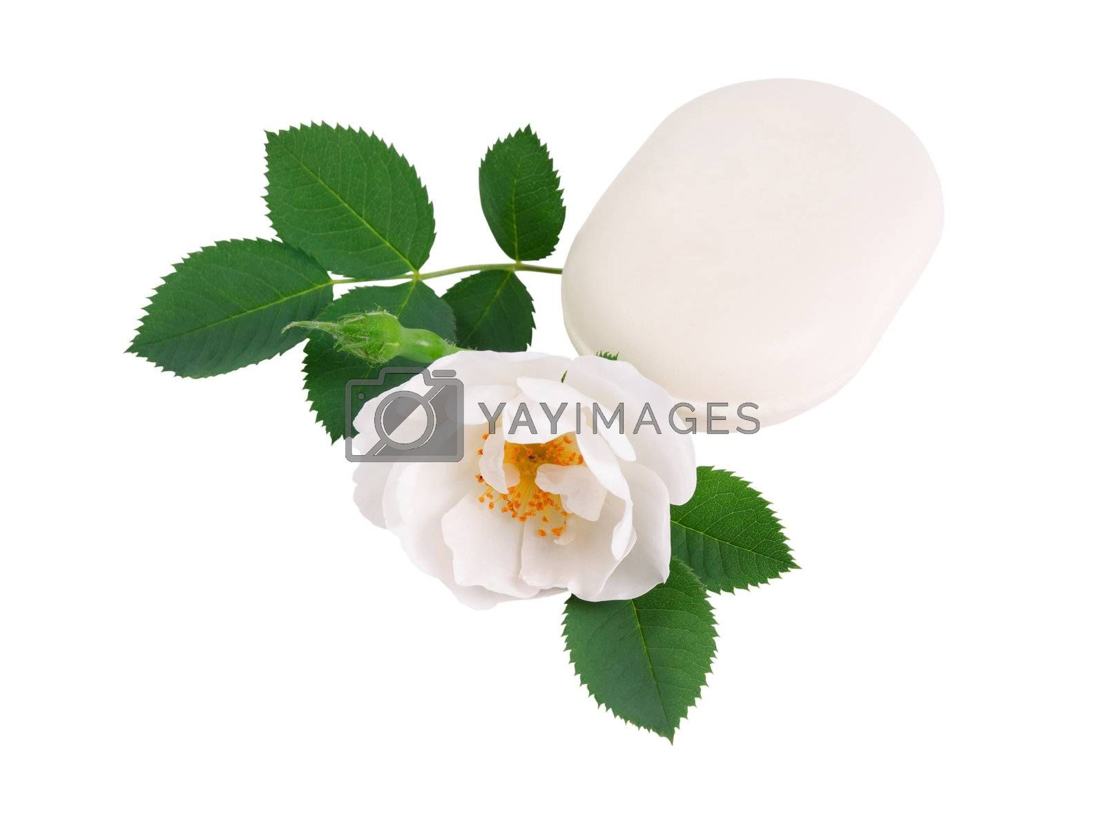 Natural soap with a rose flower isolated on white background
