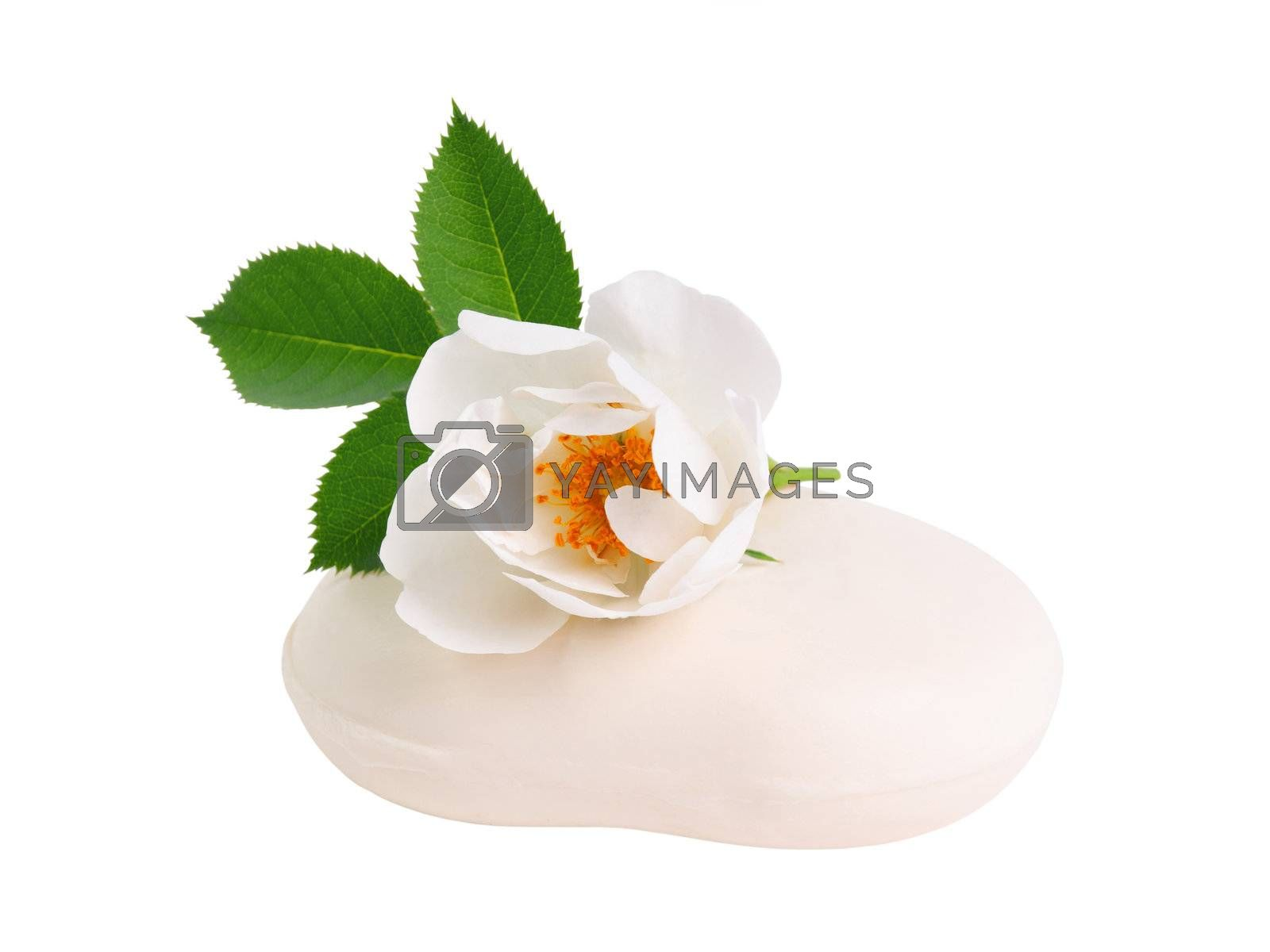 Rose flower on pieces of natural soap isolated on white background