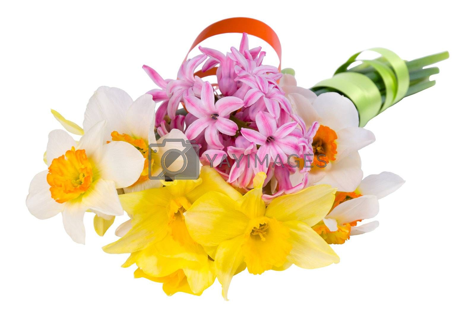 Bouquet of yellow and white narcissus, pink hyacinth with green and orange tape isolated on a white background