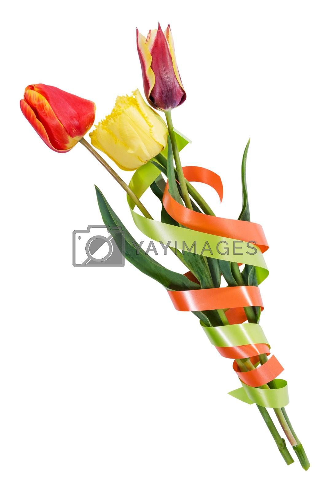 Beautyful bouquet of three tulips with tape isolated on a white background
