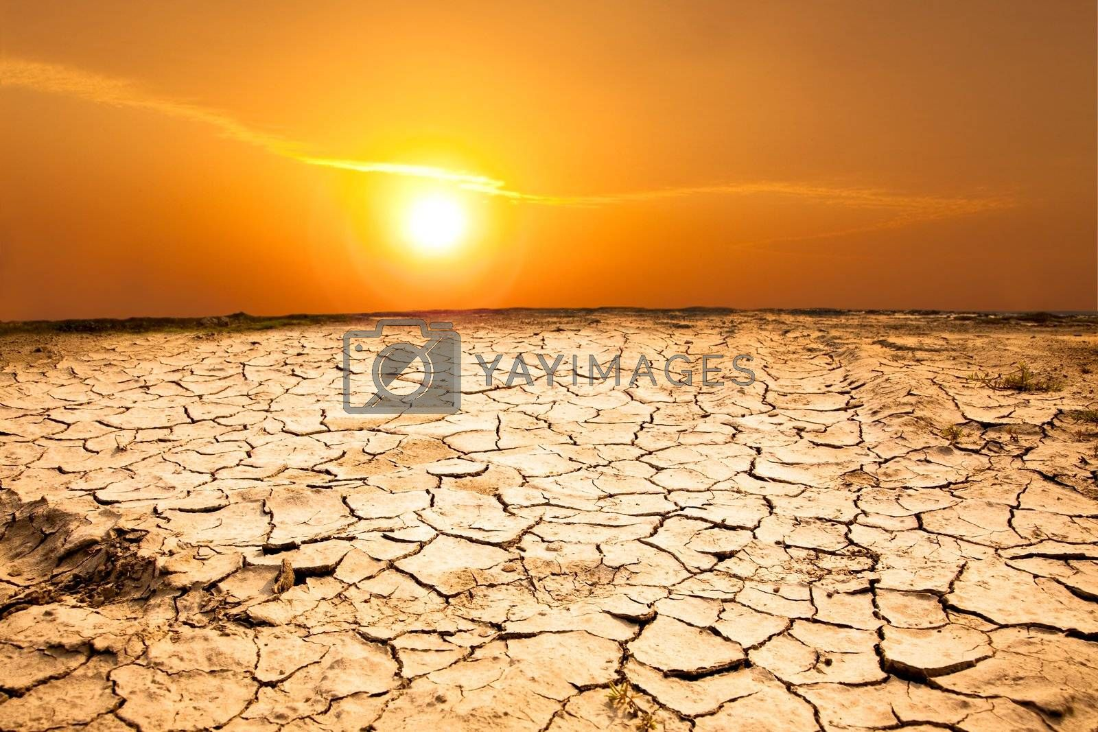 drought land and hot weather  by tomwang