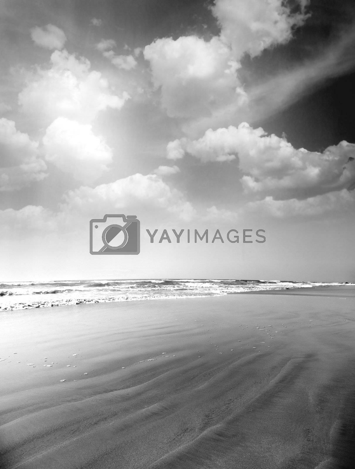 Monochrome summer beach. Vertical photo